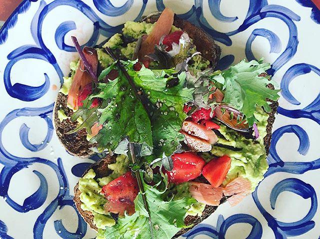 Beautiful avocado toast at Dove's