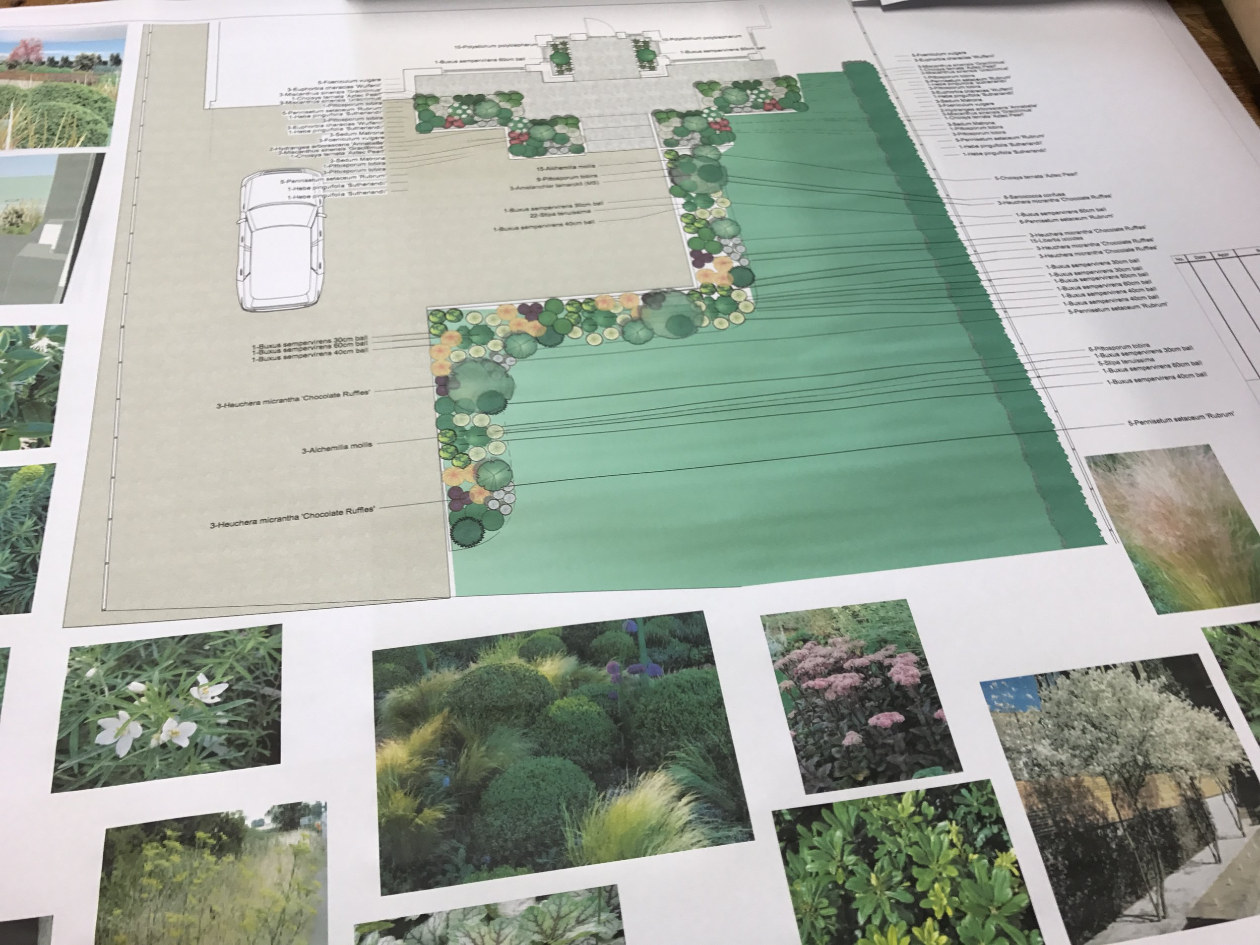 Planting plan and mood board on CAD