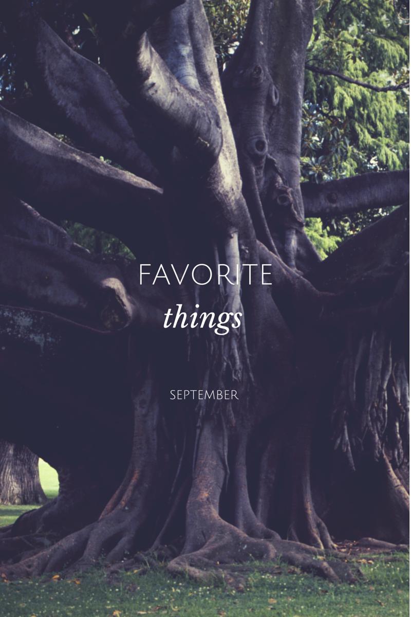 FAVORITETHINGS.png