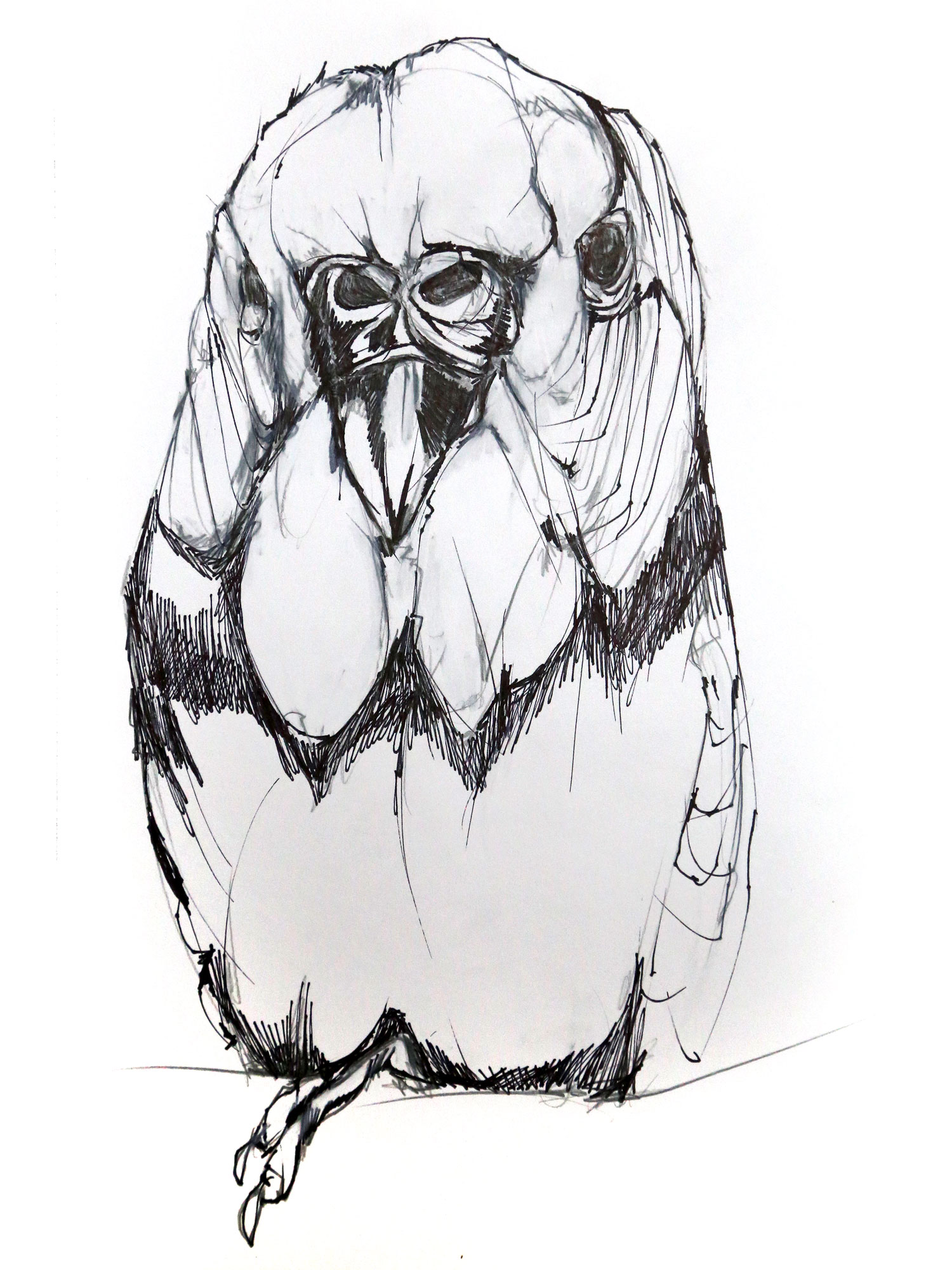 parrot-bw.jpg