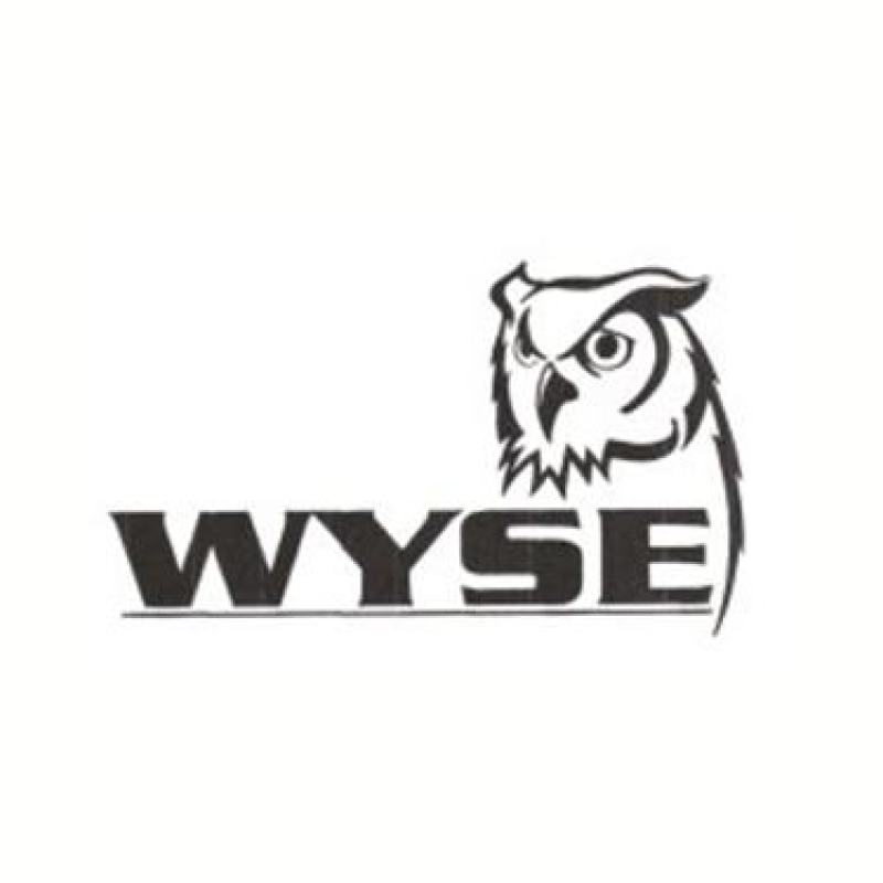 WyseDesignLogo.png