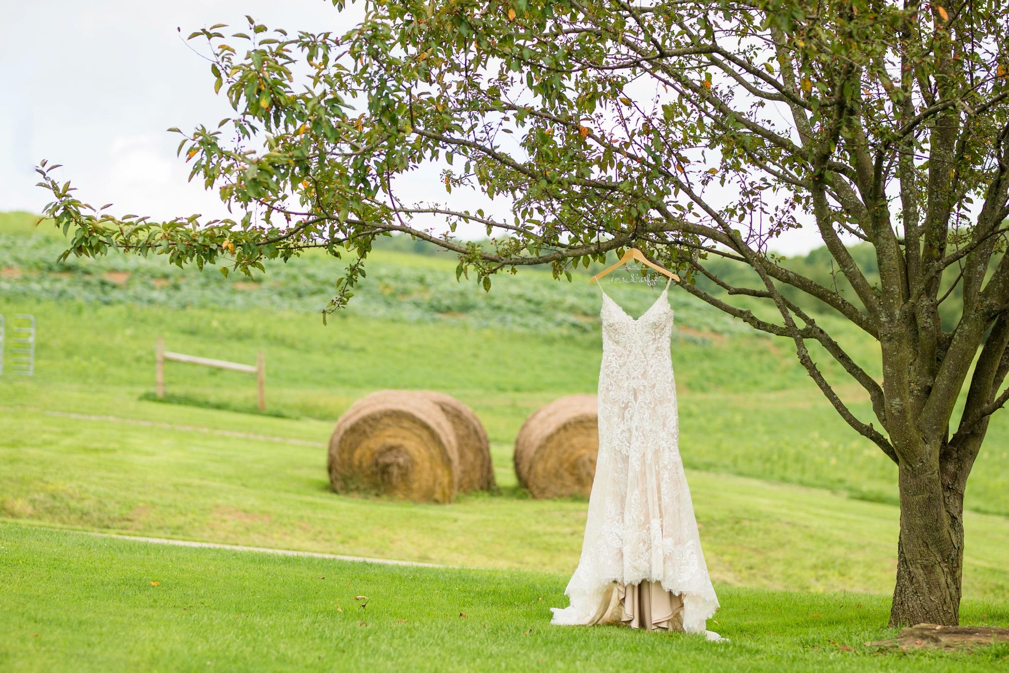 renshaw family farms wedding photos, renshaw family farms freeport pa, pittsburgh wedding photographer, pittsburgh wedding venues, bride and groom posing ideas, wedding photo ideas