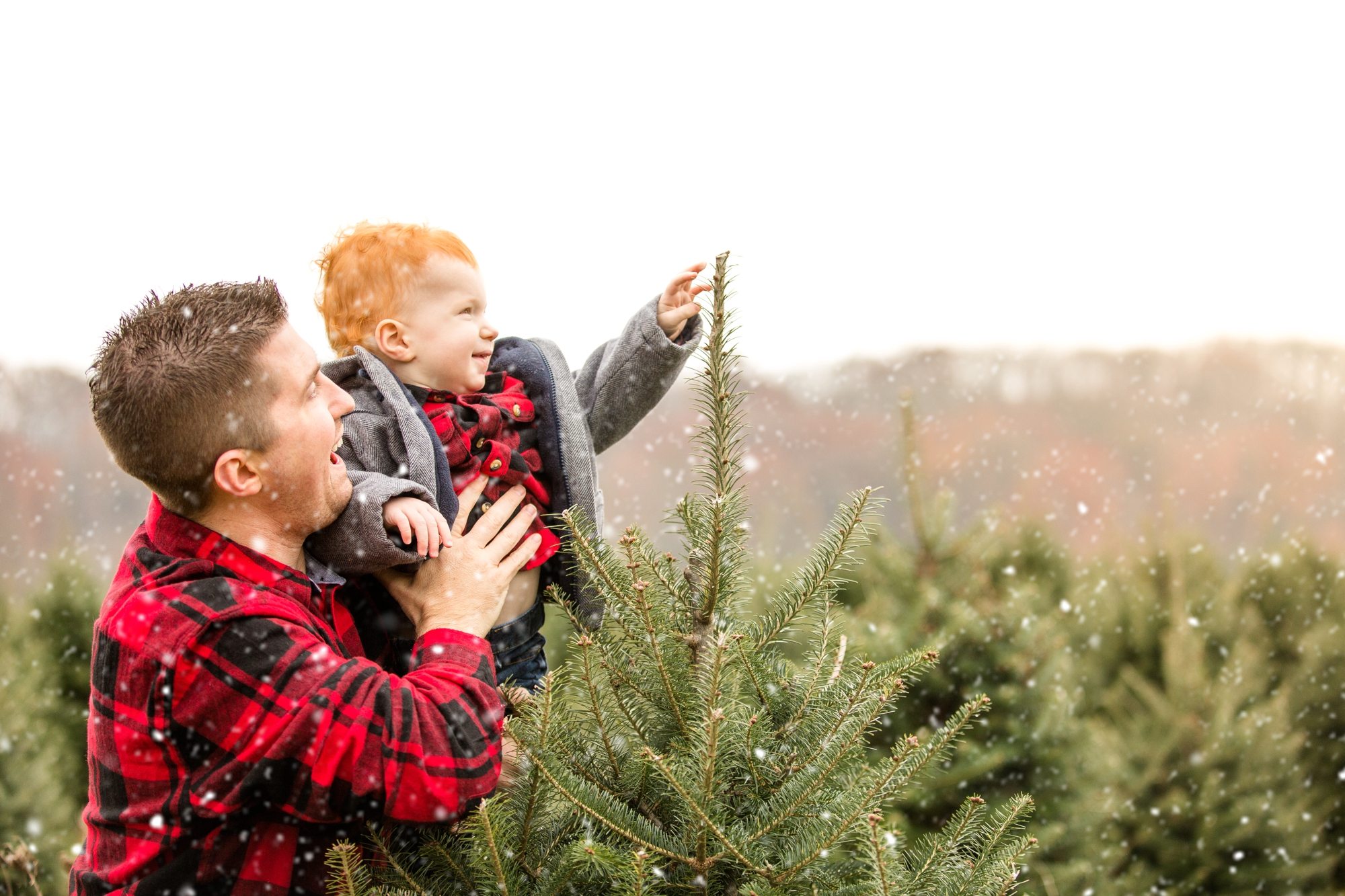 pittsburgh family photographer, cranberry township family photographer, wexford family photographer, christmas tree farm family photos