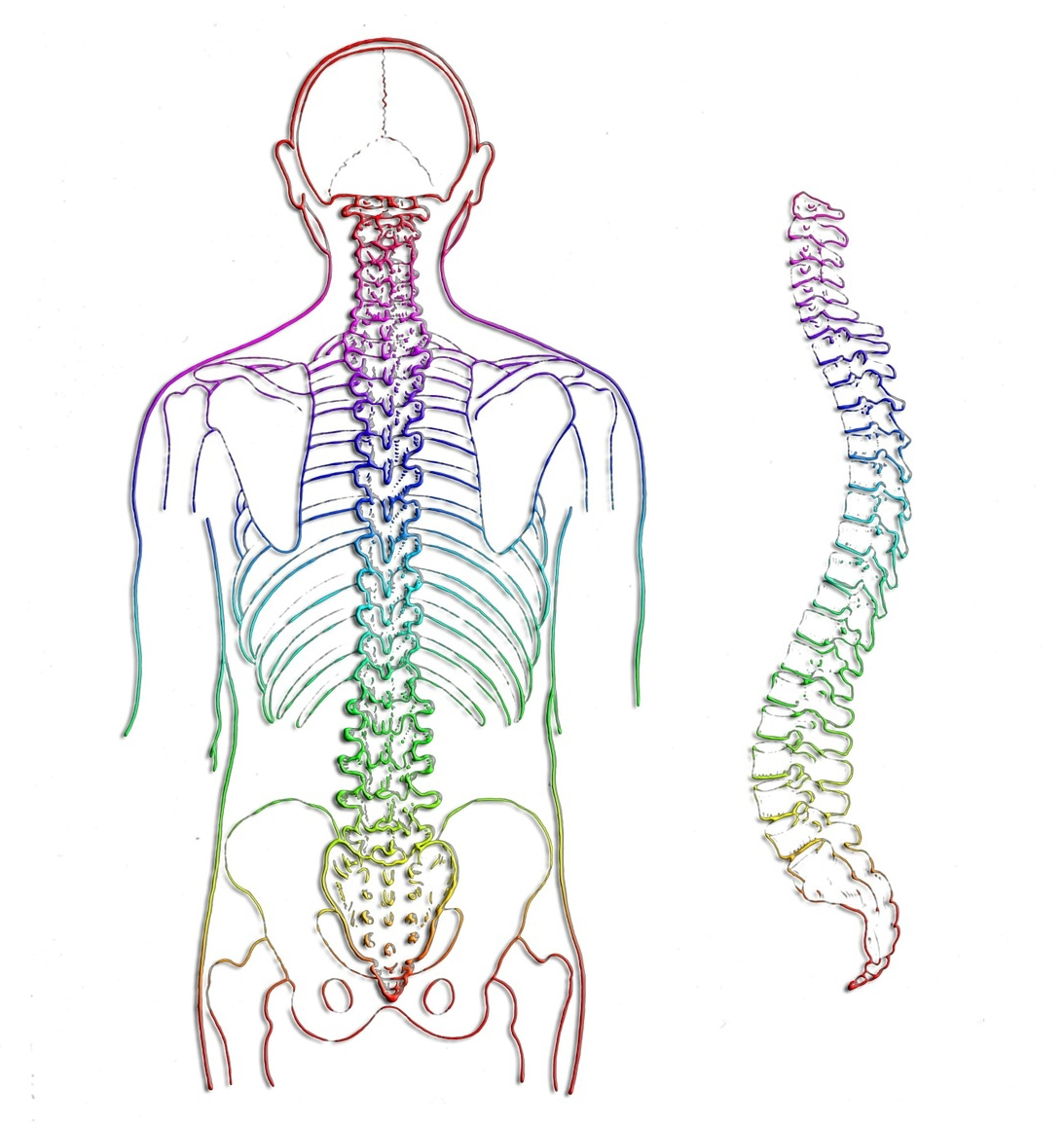 Scoliosis lower back pain spinal stenosis