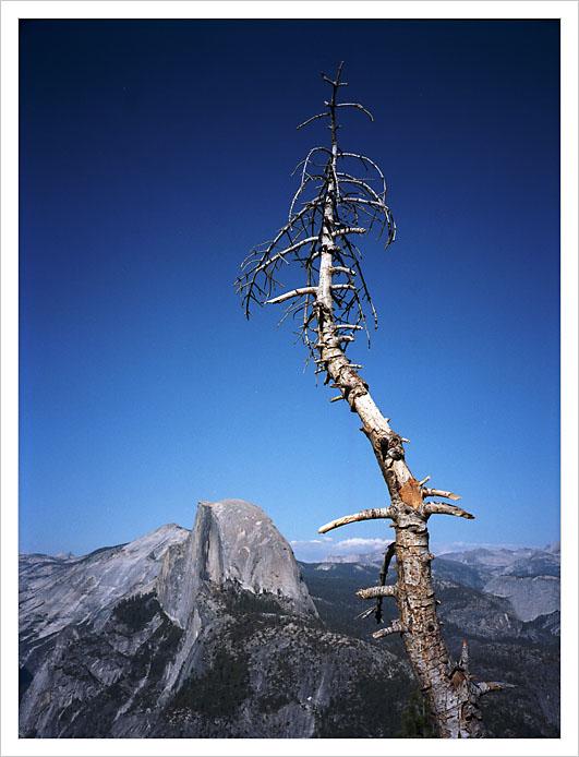 Yosemite 71.jpg