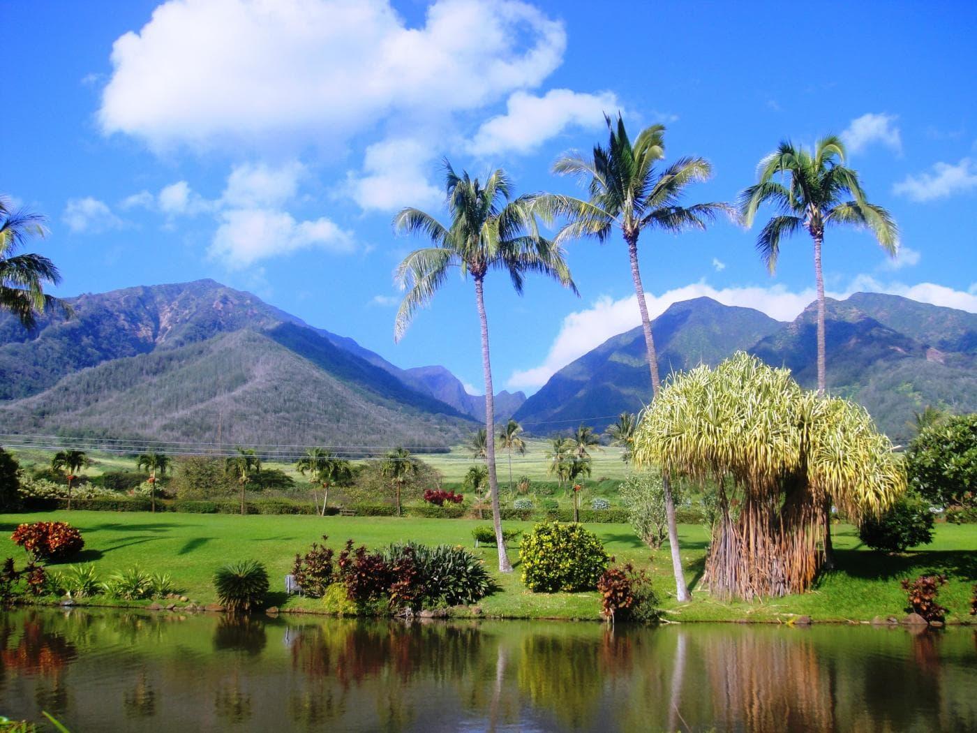 iao-valley-and-maui-tropical-plantation-maui-kahului-hi-1.jpg