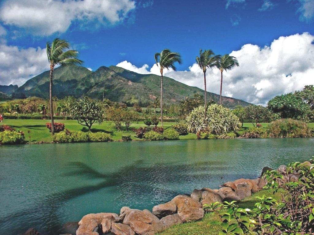 maui-tropical-plantation-1024x768.jpg