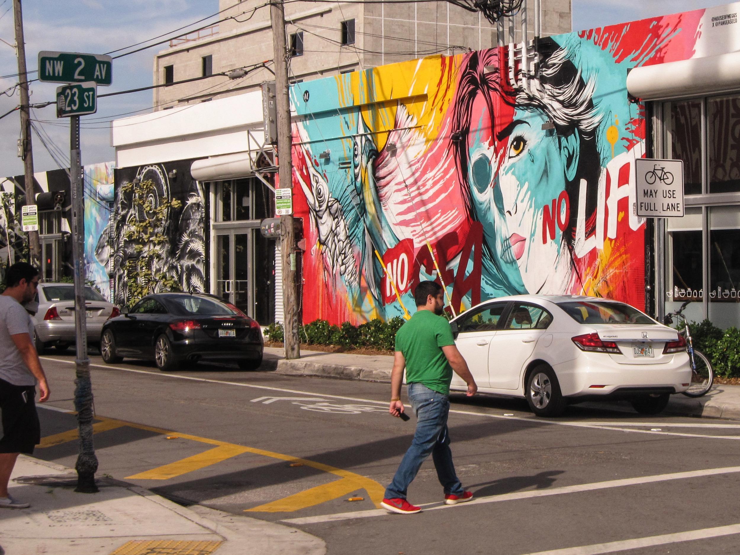 A walk down Wynwood viewing the street art of Miami.