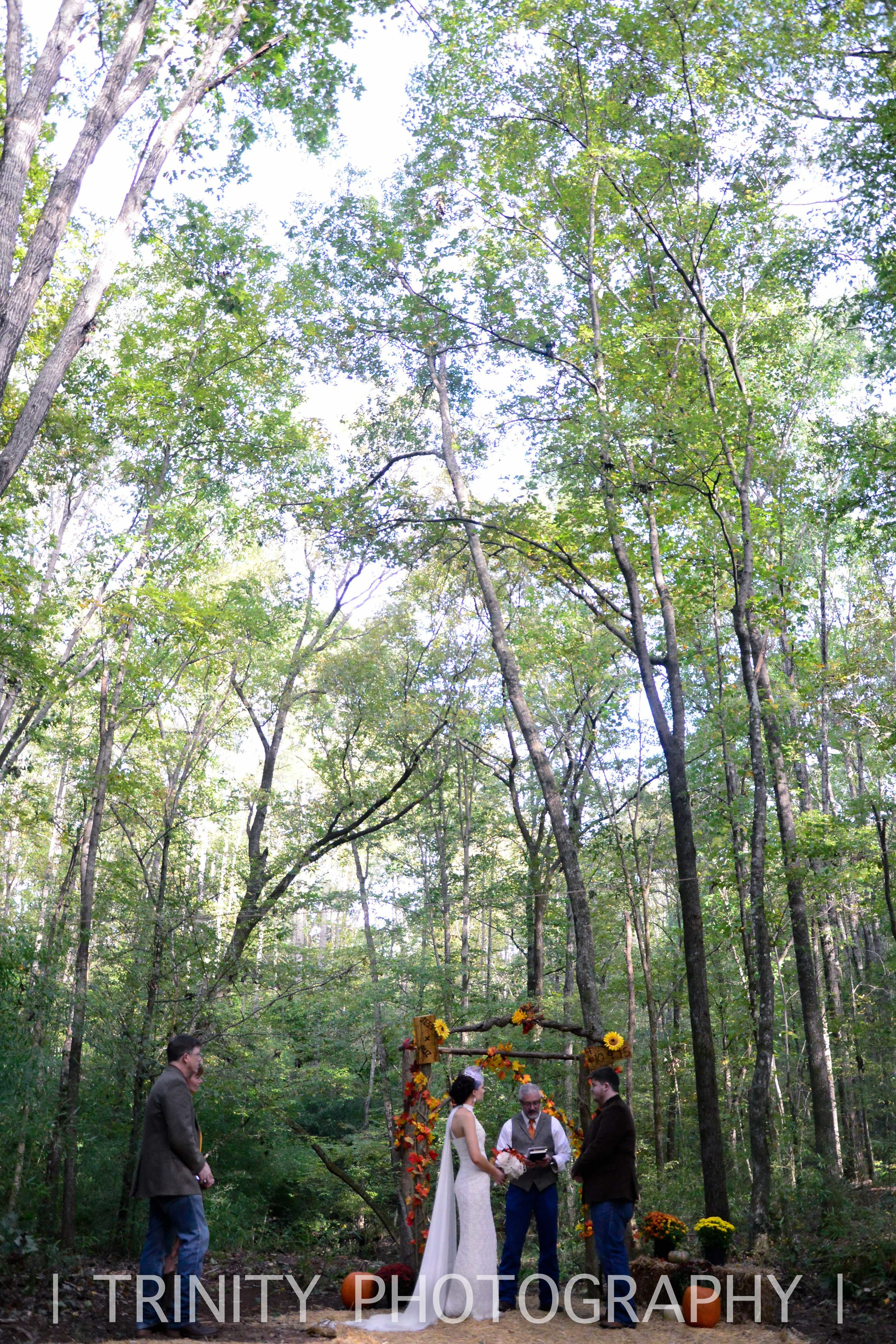 Elope in the woods
