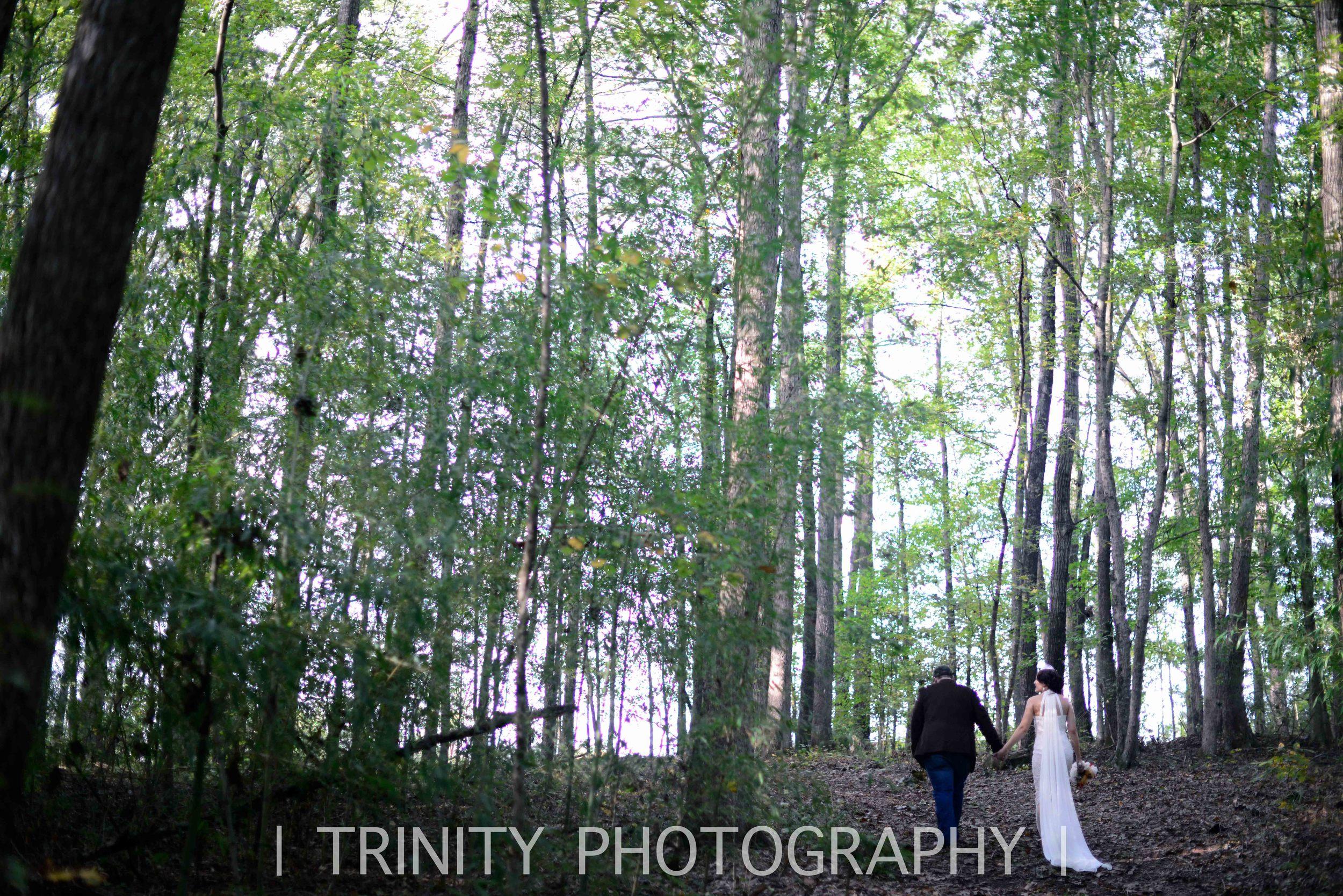 travel forest wedding