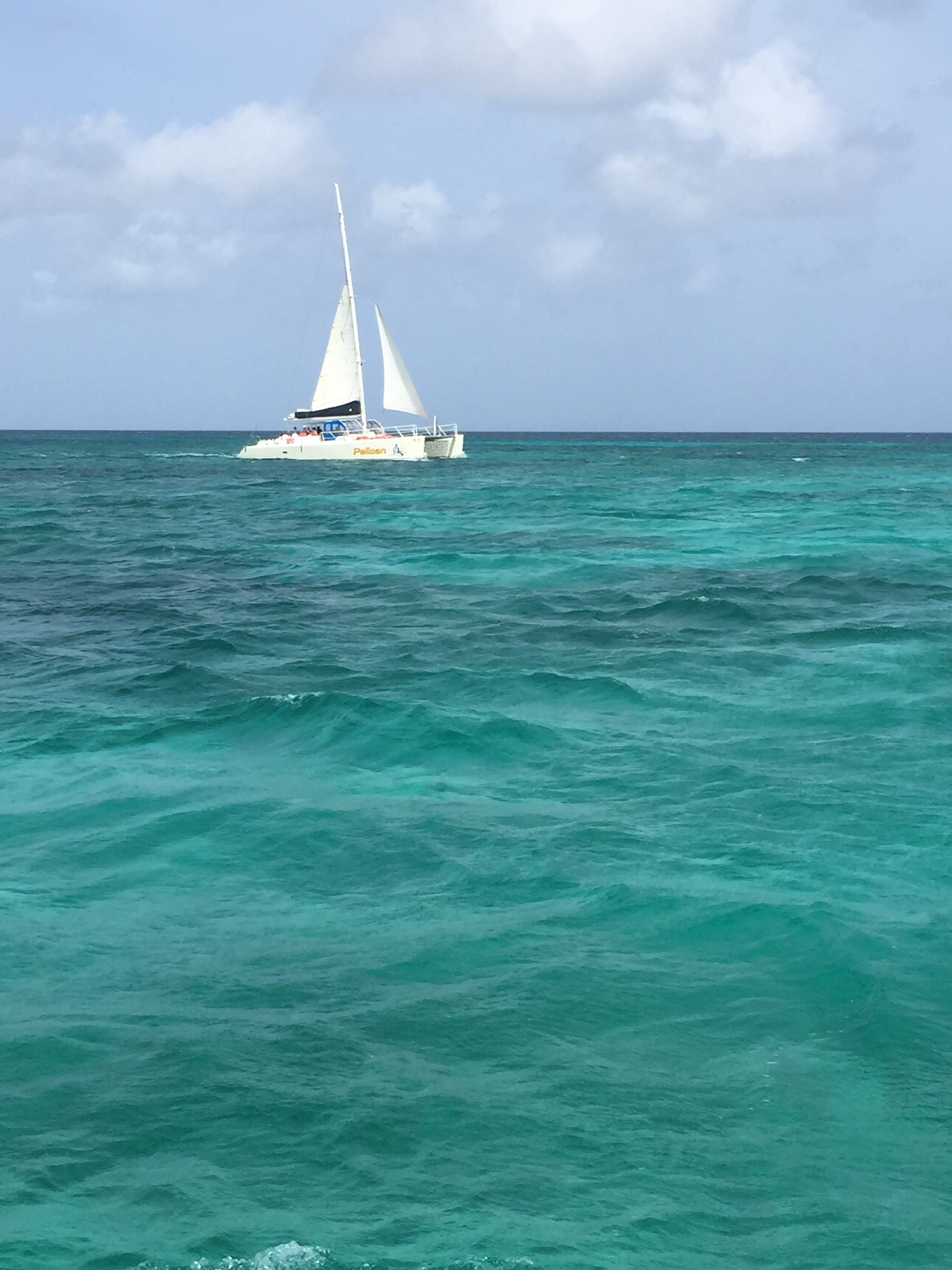 Always always ride a sailboat when you are near the ocean!