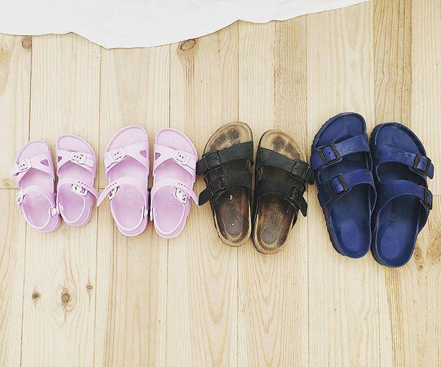 #happyfeet👣 holiday sandals - keep it in the family #comfortisking #strolling #walkonthewildside #birkenstocks #birkenstocklife #holidayfeet #footwork #theseshoesweremadeforwalking #sandals #feetfirst