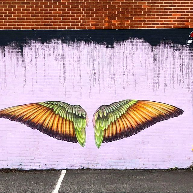 Find the wings to make you fly high #flyinghigh #highflying #aimbig #goingplaces #touchedbyanangel #angelwings #butterflywings #wings #beautifulwings #bigwings #communityart #communityarts #artcommunity #streetart #wallartist #localartists #ladybirdcollective #inspirationallaroundus #freethinking