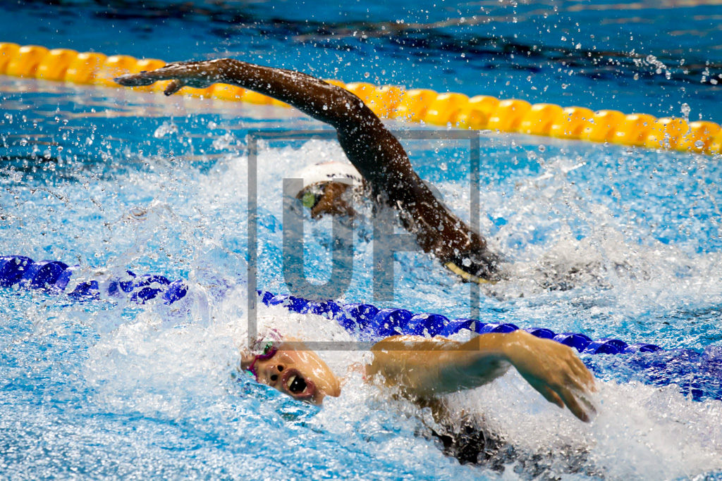 swimming_rio2016-7.jpg