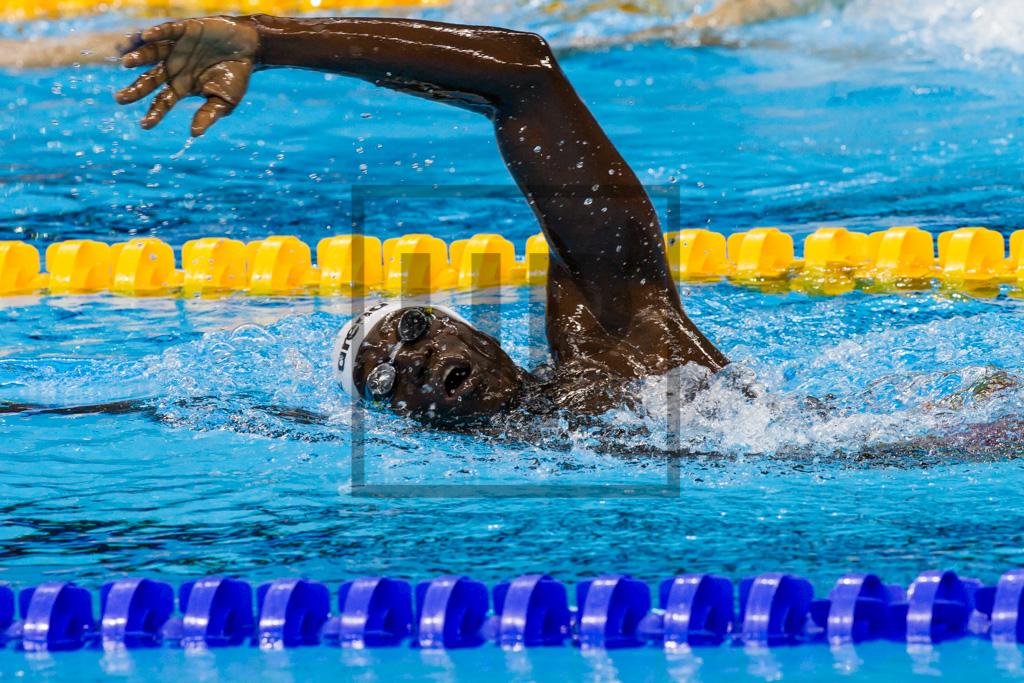 swimming_rio2016-2.jpg