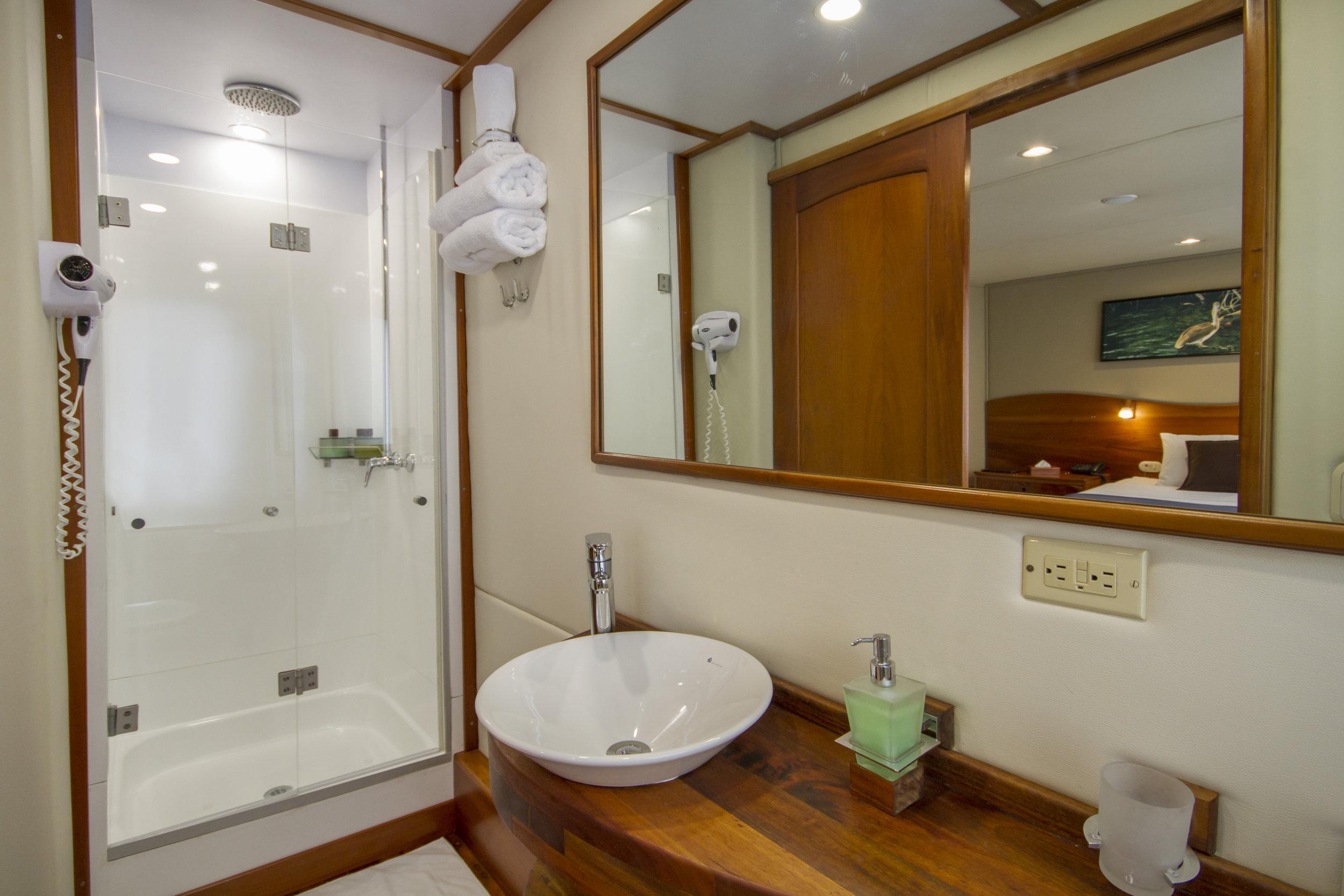 Stateroom standard bathroom.jpg