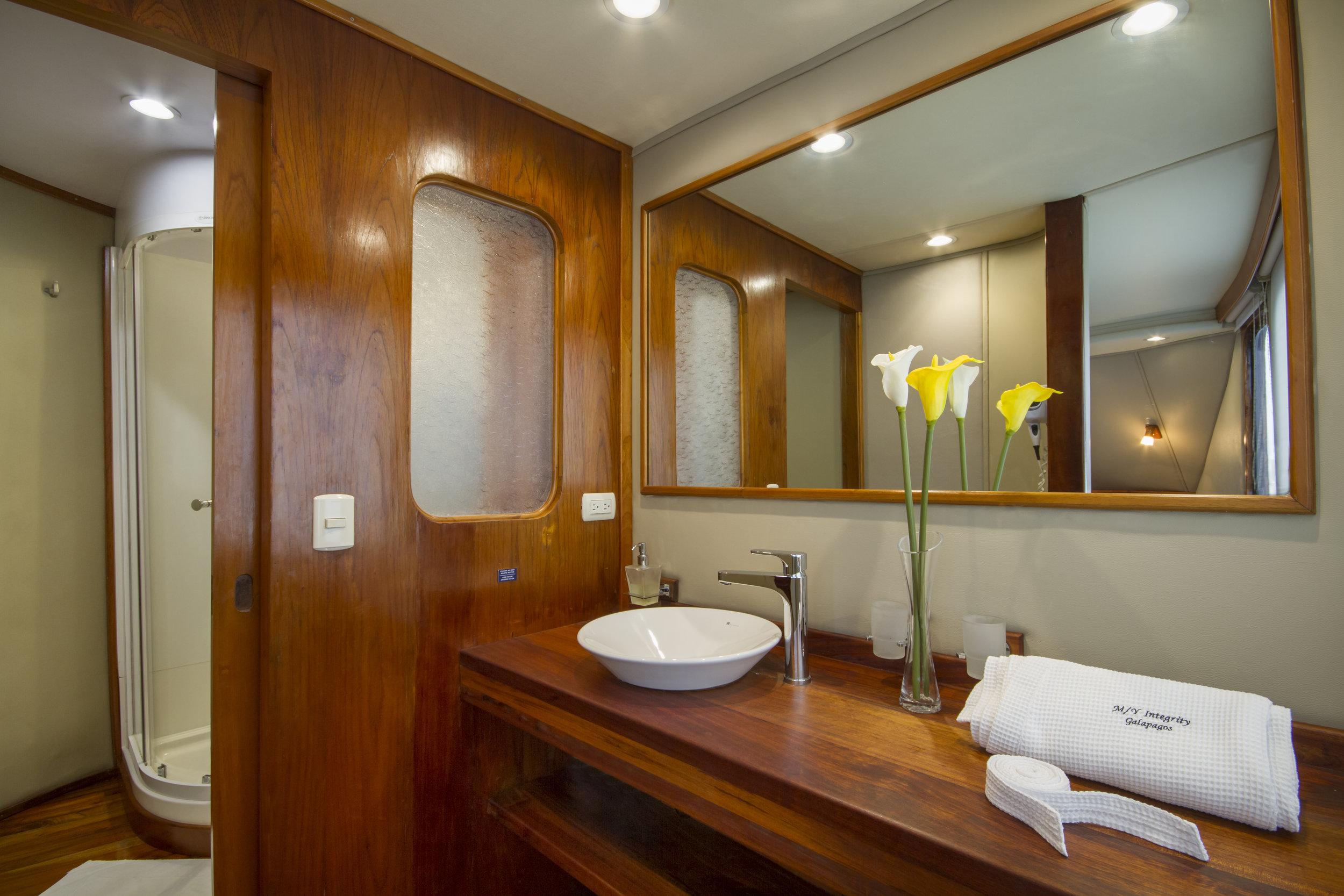 Stateroom 01 Owner's Suite bathroom.jpg