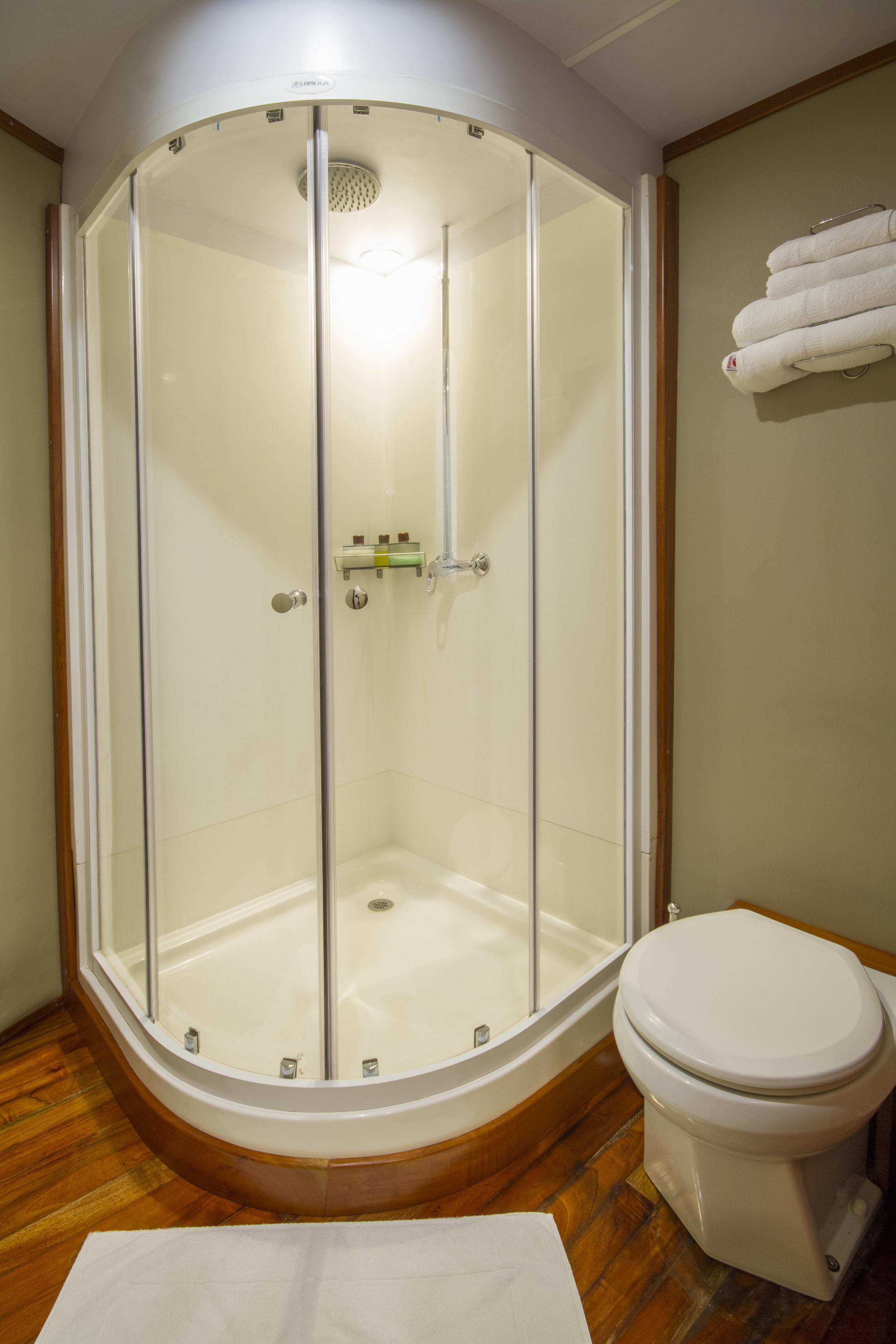 Stateroom 01 Owner's Suite shower.jpg