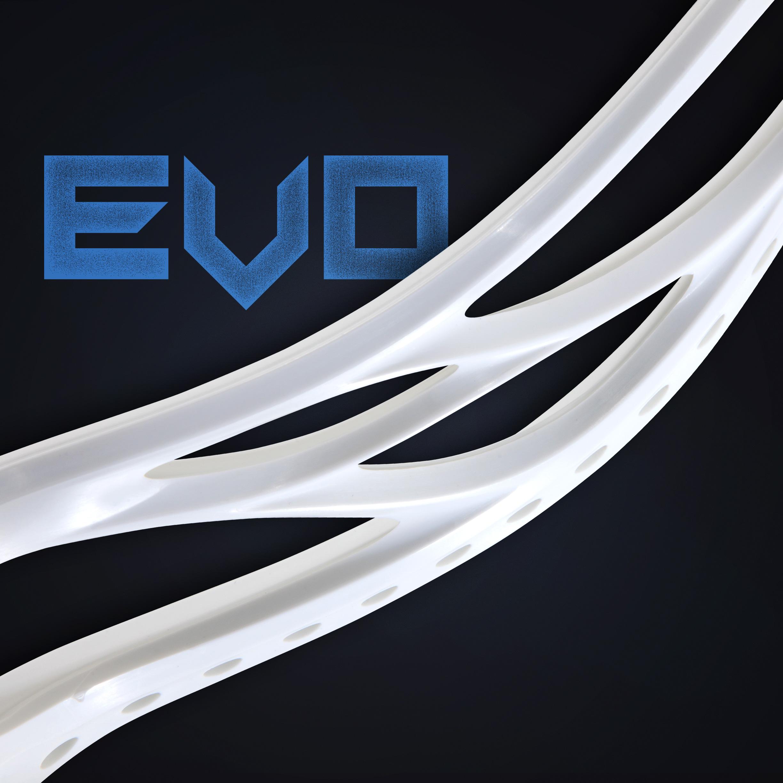 EVO_Head_2.jpg