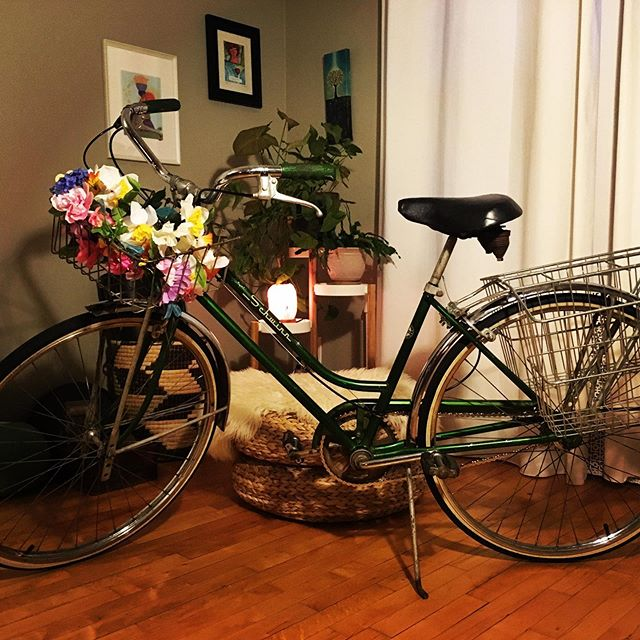 Gifts for 39 years  #schwinnbreeze #grocerygetter #cyclesforchange #freshflowers #thanksdavid #birthday #39 #virgo
