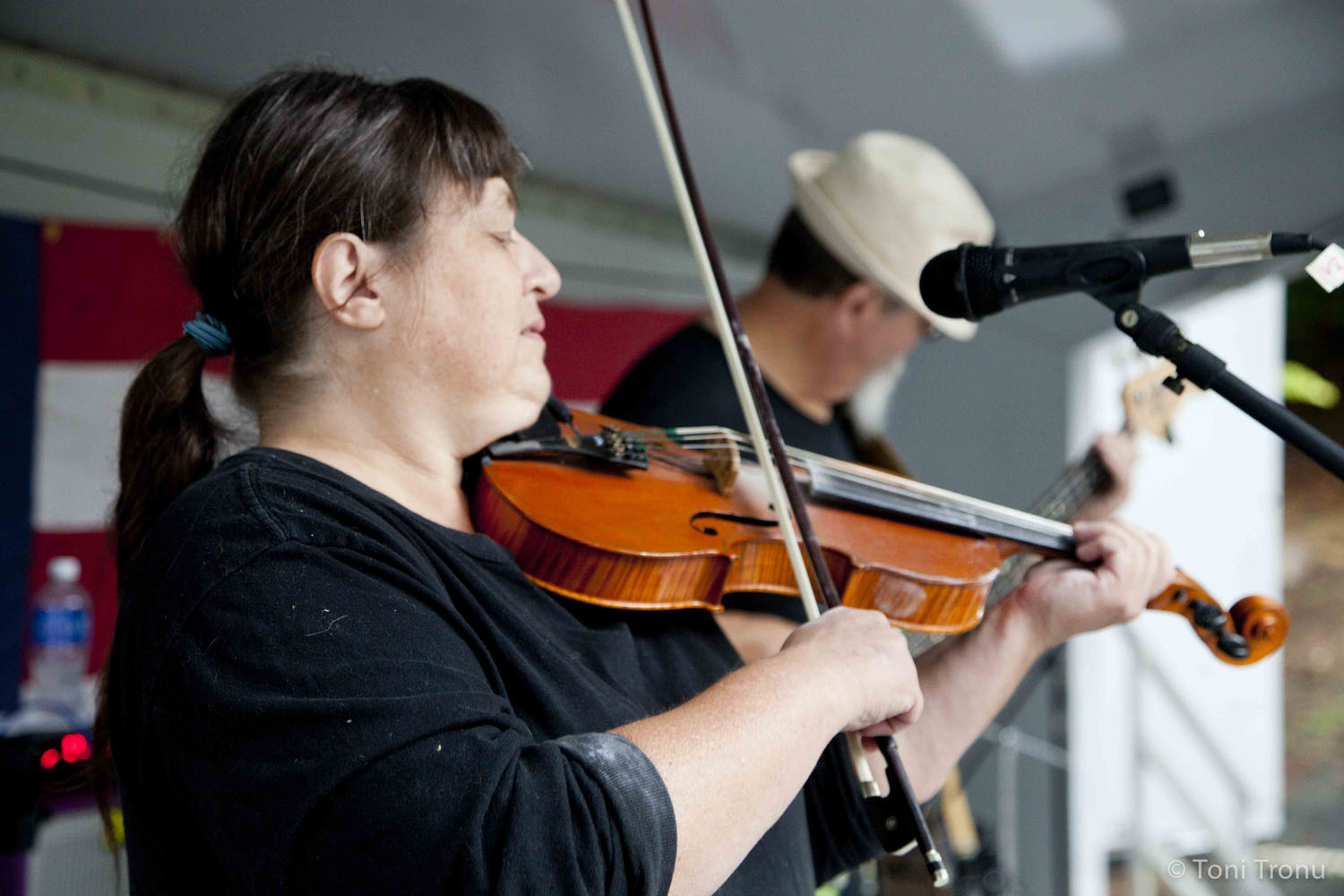 debbie-gitlin-fiddle-player-stained-glass-canoe-5-piece-band-perfomance-stokes-arts-council-an-andrea-templon-band-dragonfly.jpg