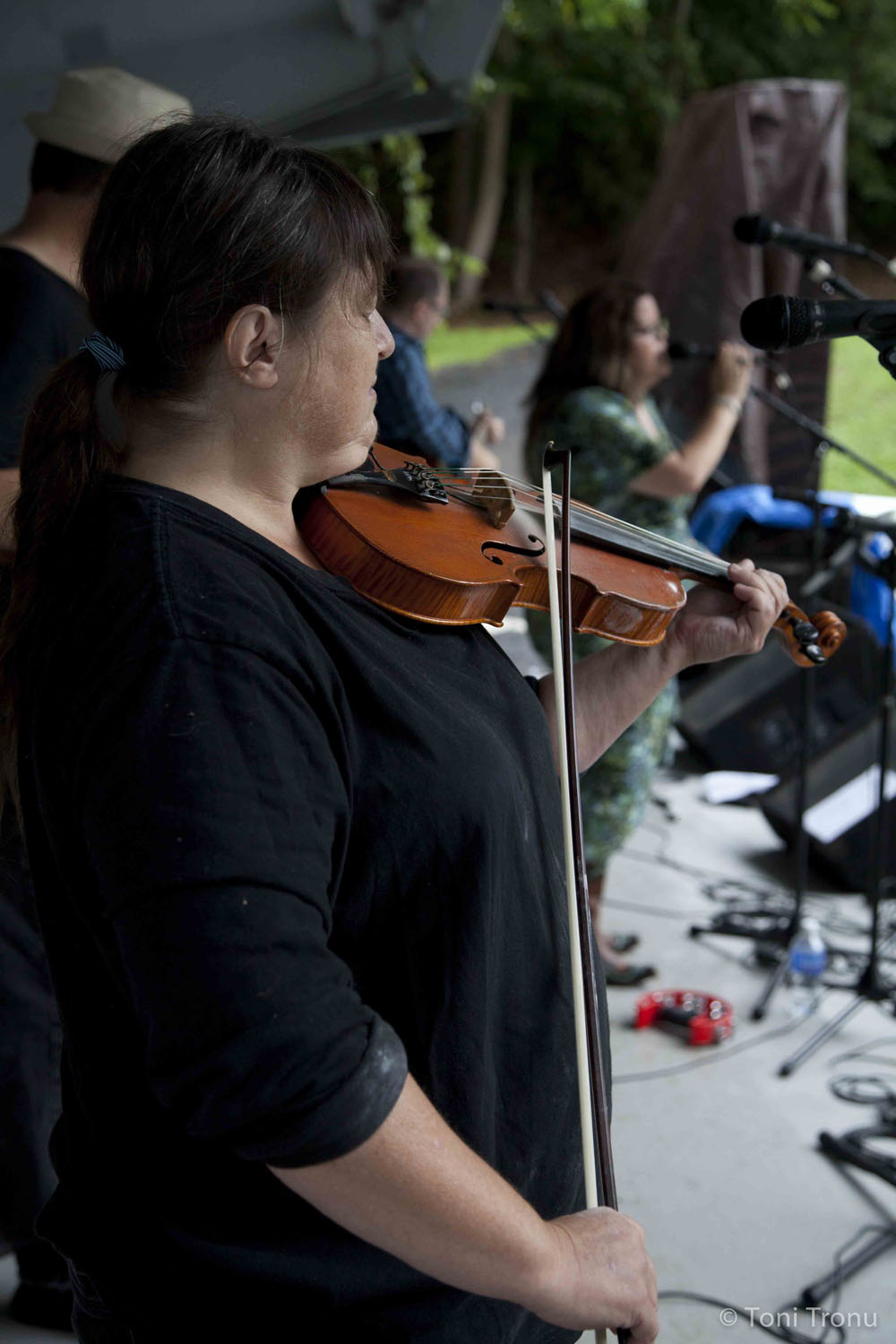 fiddle-debbie-gitlin-stained-glass-canoe-band-stokes-stomp-arts-council-festival-danbury-north-carolina-live-music-local-art-photography.jpg