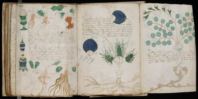 *Stock photo only. The Voynich Manuscript will *NOT* be on display!