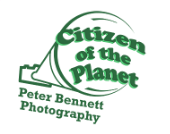 COTP_logo_green_green.png
