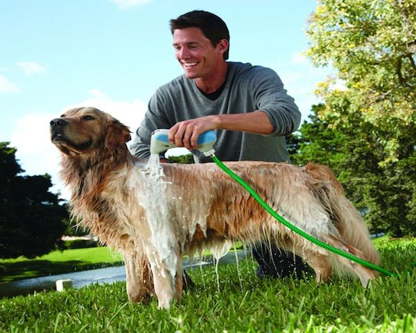 HydroSurge-RapidBath-For-Dogs.jpg