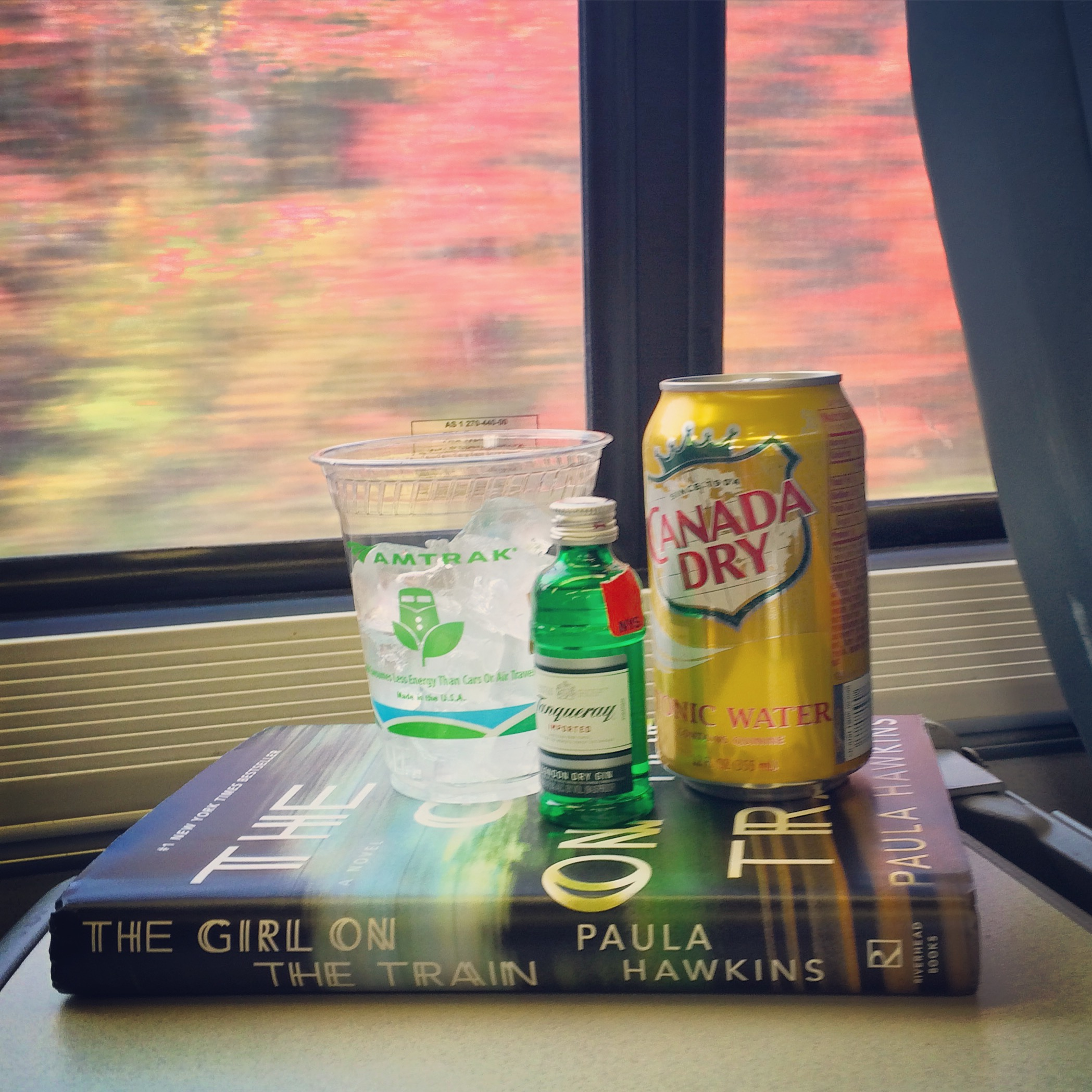 gin on a train