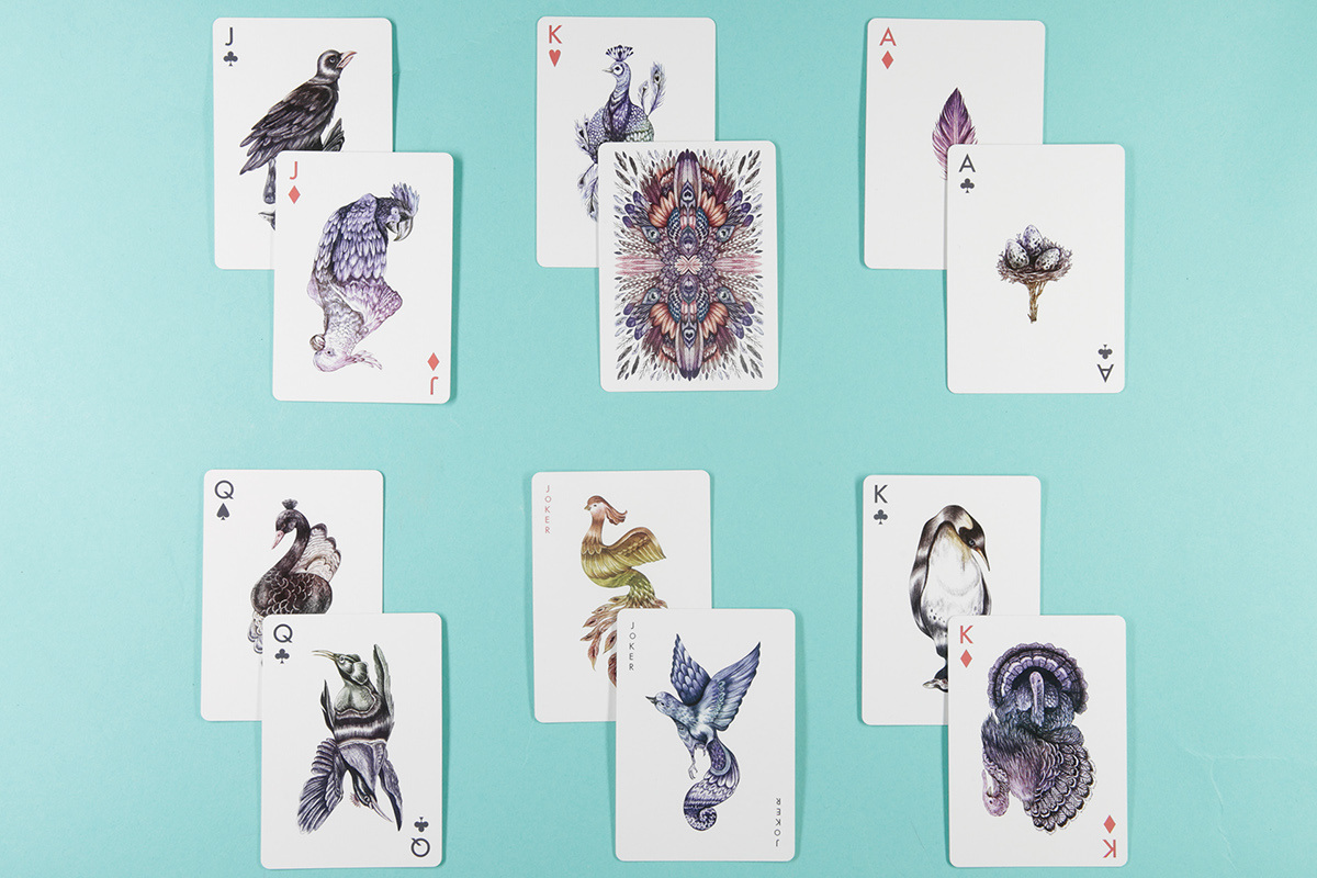 layout multi cards aves.jpg