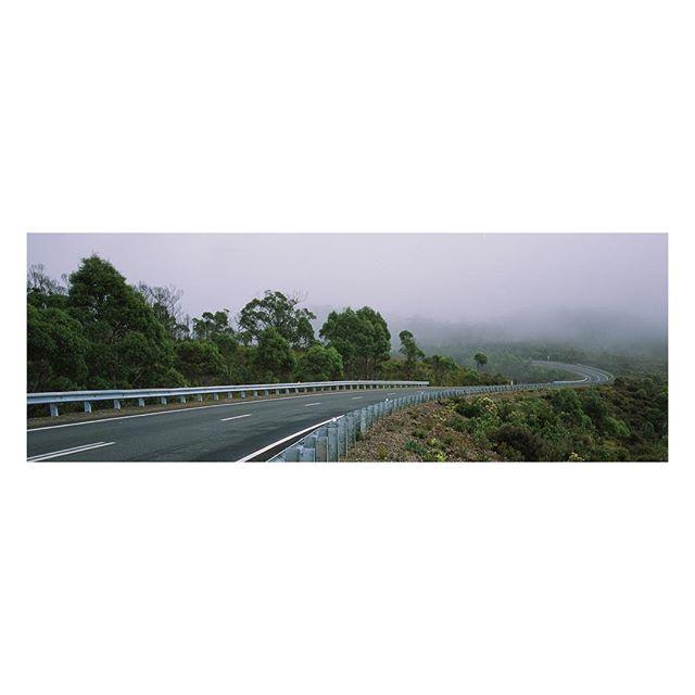 C U R V E ⠀⠀⠀⠀⠀⠀⠀ ⠀⠀⠀ ⠀⠀⠀⠀⠀⠀ ⠀⠀⠀ ⠀⠀⠀ ⠀⠀⠀ ⠀⠀⠀ ⠀⠀⠀ ⠀⠀⠀ #hasselblad #xpan on #provia 100f⠀⠀⠀⠀⠀⠀ ⠀⠀⠀ ⠀⠀⠀⠀⠀⠀ ⠀⠀⠀ ⠀⠀⠀ ⠀⠀⠀ ⠀⠀⠀ ⠀⠀⠀⠀⠀⠀⠀⠀⠀⠀ ⠀⠀⠀ ⠀⠀⠀⠀⠀⠀ ⠀⠀⠀ ⠀⠀⠀ ⠀⠀ #fog #foggy #mist #aussie #misty #australia #tassie #roadtrip #film #tassiepics #ontheroad #filmphotography #filmisnotdead #35mm #road #camping #analog #aussiesofinstagram #australiagram #movie #hobartandbeyond #ishootfilm #vanlife #tasmaniagram #curve