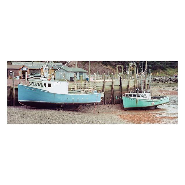 E B B⠀T I D E⠀⠀⠀⠀⠀⠀⠀ ⠀⠀⠀ ⠀⠀⠀⠀⠀⠀ ⠀⠀⠀ ⠀⠀⠀ ⠀⠀⠀ ⠀⠀⠀ ⠀⠀⠀ ⁣ ⁣⁣ ⁣⠀⠀⠀⁣⁣ ⁣⁣#xpan on #Kodak #colorplus200⁣⁣ ⁣⁣ ⠀⠀⠀⠀⠀⠀⠀⠀⠀⁣⁣ ⁣⁣#hasselblad #film #buyfilmnotpixels #SaintMartins #NewBrunswick #harbor #NB #Canada #BayofFundy #filmphotography #filmisnotdead #35mm #analog #ishootfilm #analogue #keepfilmalive #thefilmcommunity #boats #explorecanada #explorenb #westcoast #eastcoast #maritimes #fishing #kodakcolorplus200