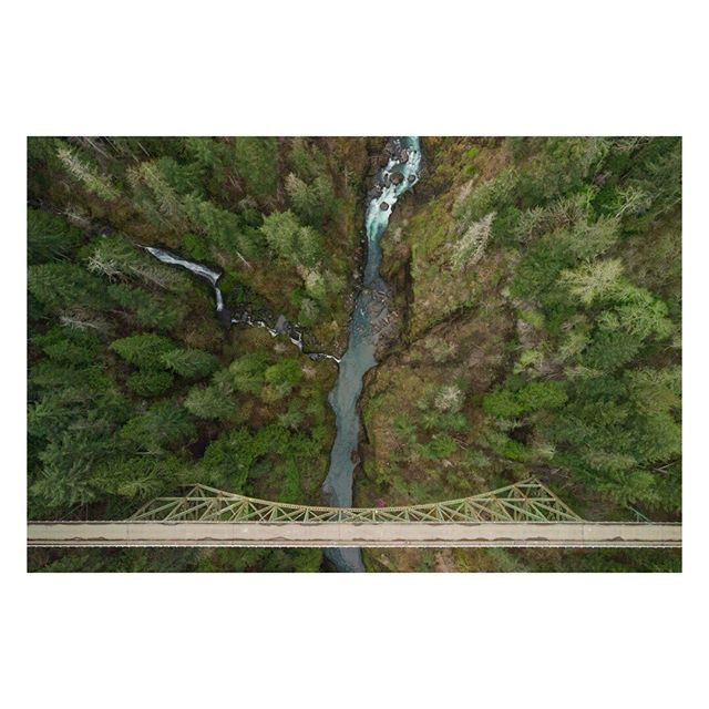 H I G H⠀S T E E L ⠀⠀⠀⠀⠀⠀⠀⠀⠀   ⠀⠀⠀⠀⠀⠀⠀⠀⠀ #dji #mavicair #drone #washington #pnw #seattle #dronestagram #drones #droneoftheday #pnwonderland #upperleftusa #wa #aerialphotography #dronefly #djiglobal #dronegear #phantom4 #aerial #pacificnorthwest #djiphantom #dronelife #phantom3 #trees #bridge #mavic #tree #river #dronephotography #thatpnwlife