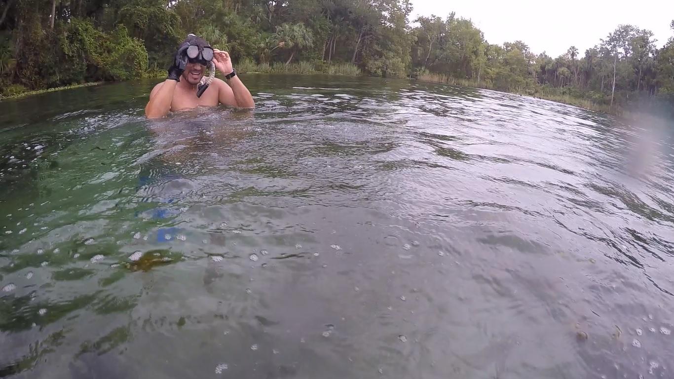 Juan, enjoying his dive in a Florida spring.