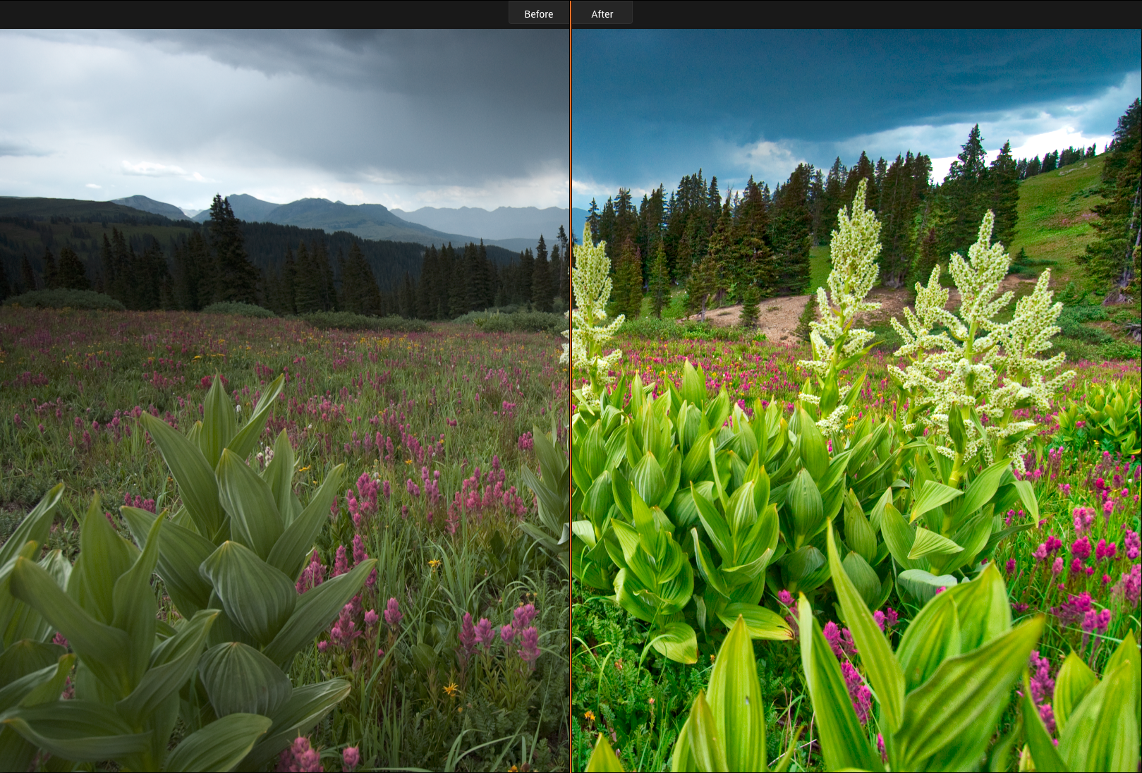 This shows the Before/After processing by Luminar.
