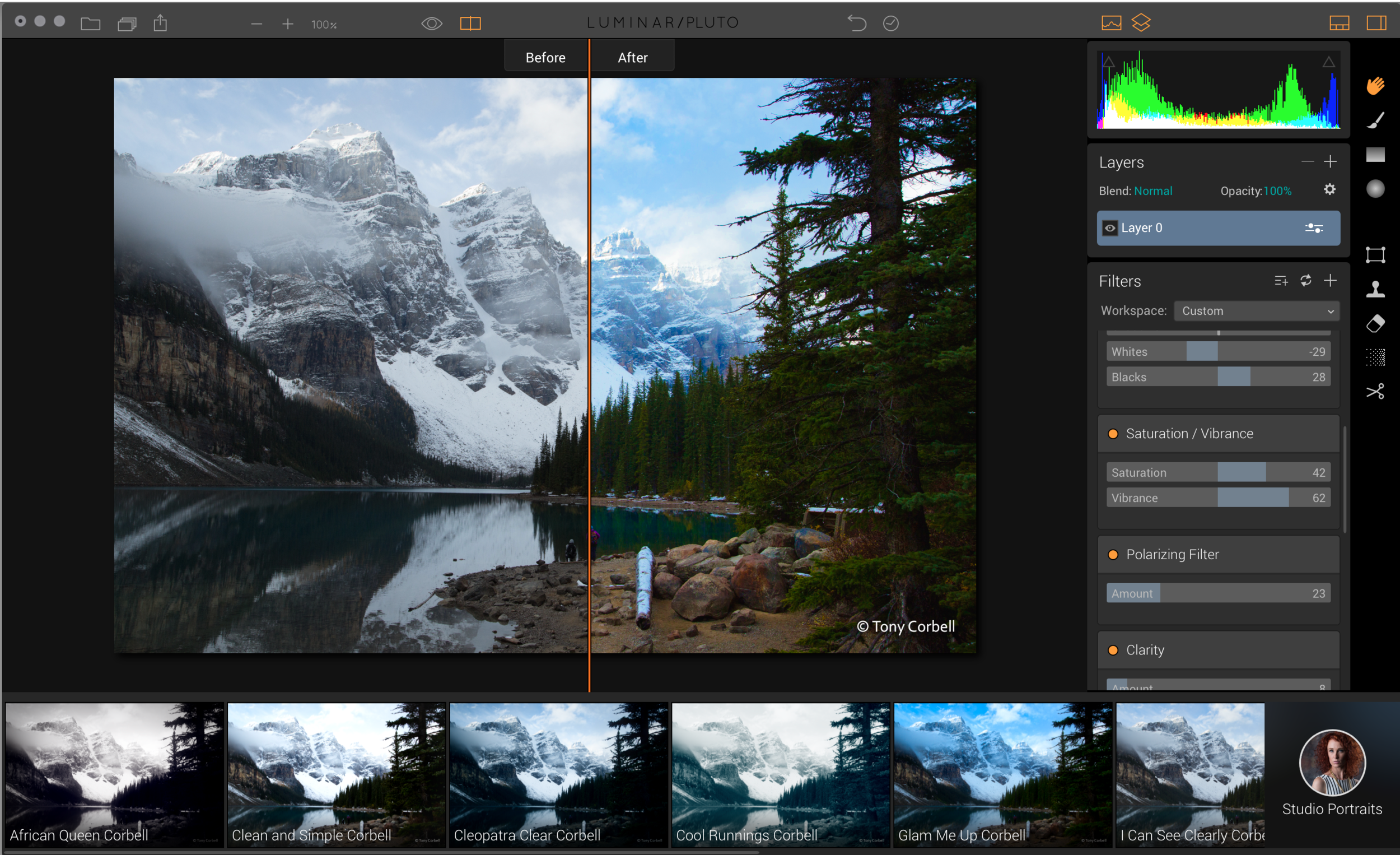 Luminar has a great user interface that is both intuitive and yet powerful enough for pros.
