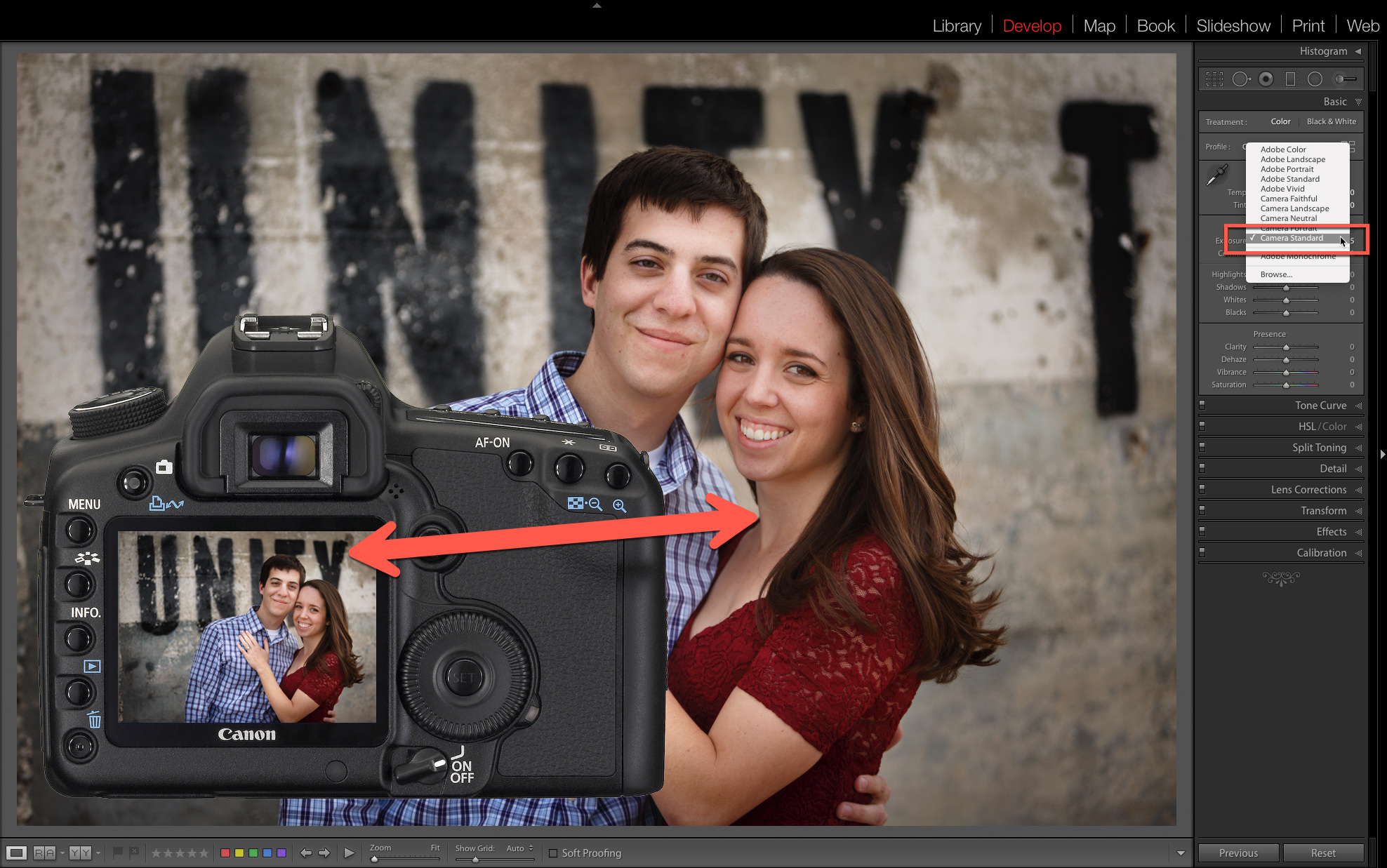 Get the Lightroom Preview to match the image you see on the back of your camera.