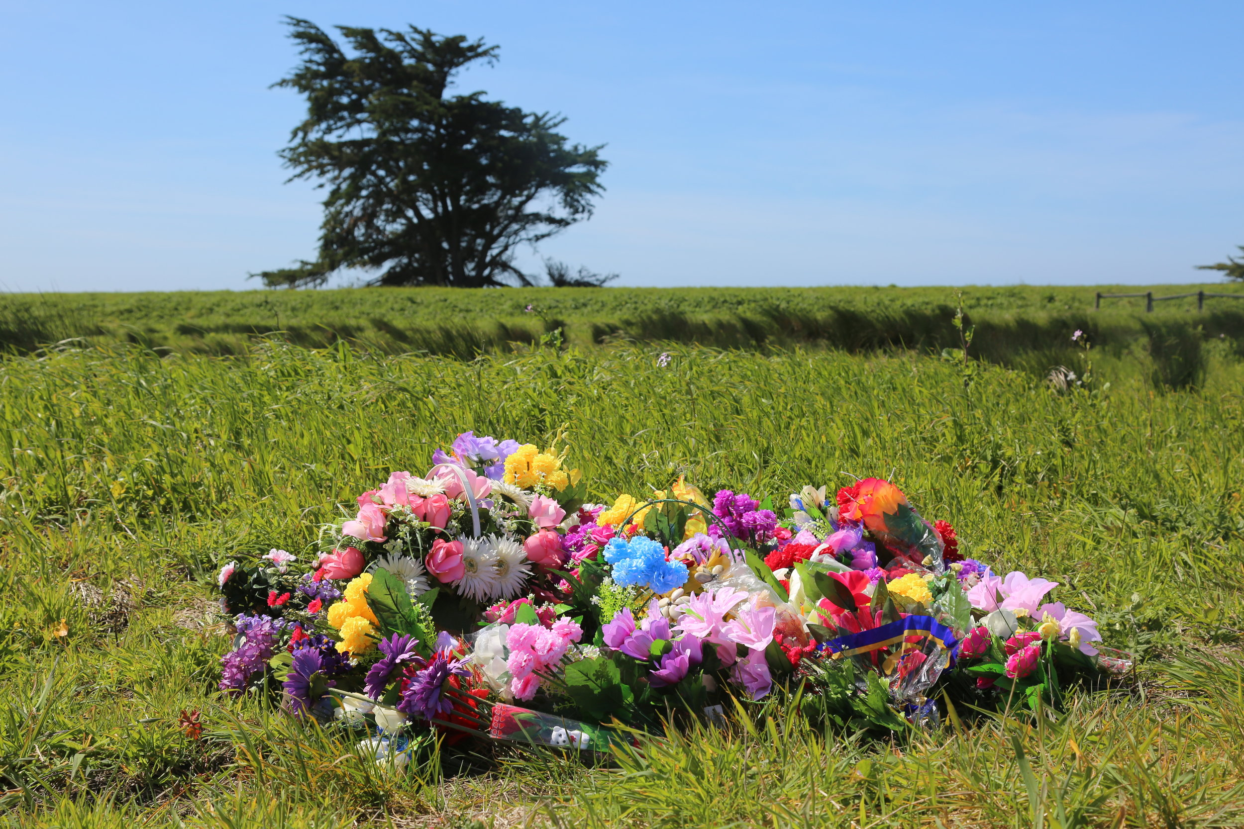 Temporary Memorial #3 , 2016 Pt. Reyes, CA