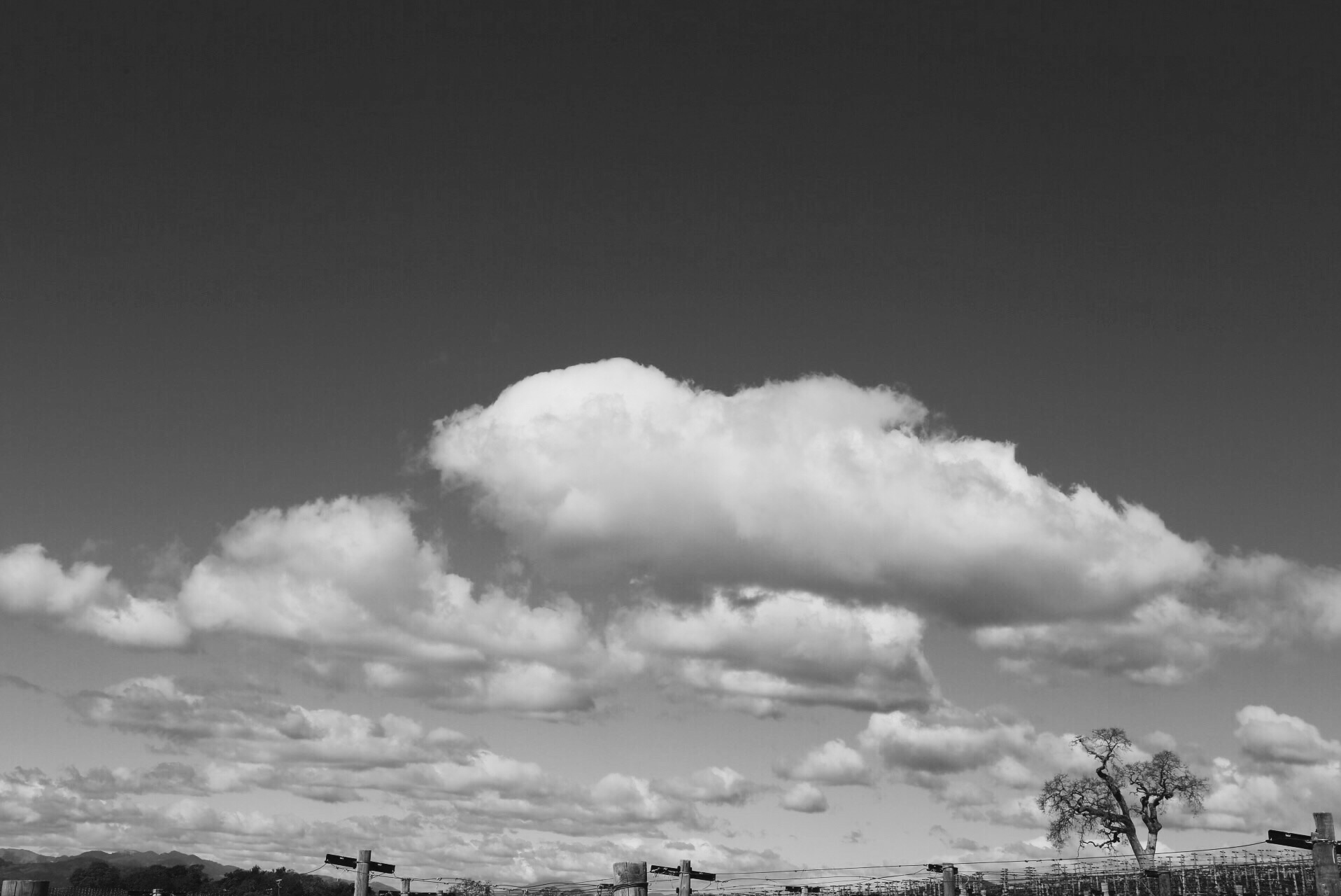 Dreamy clouds, Meteor Vineyard, February 2015