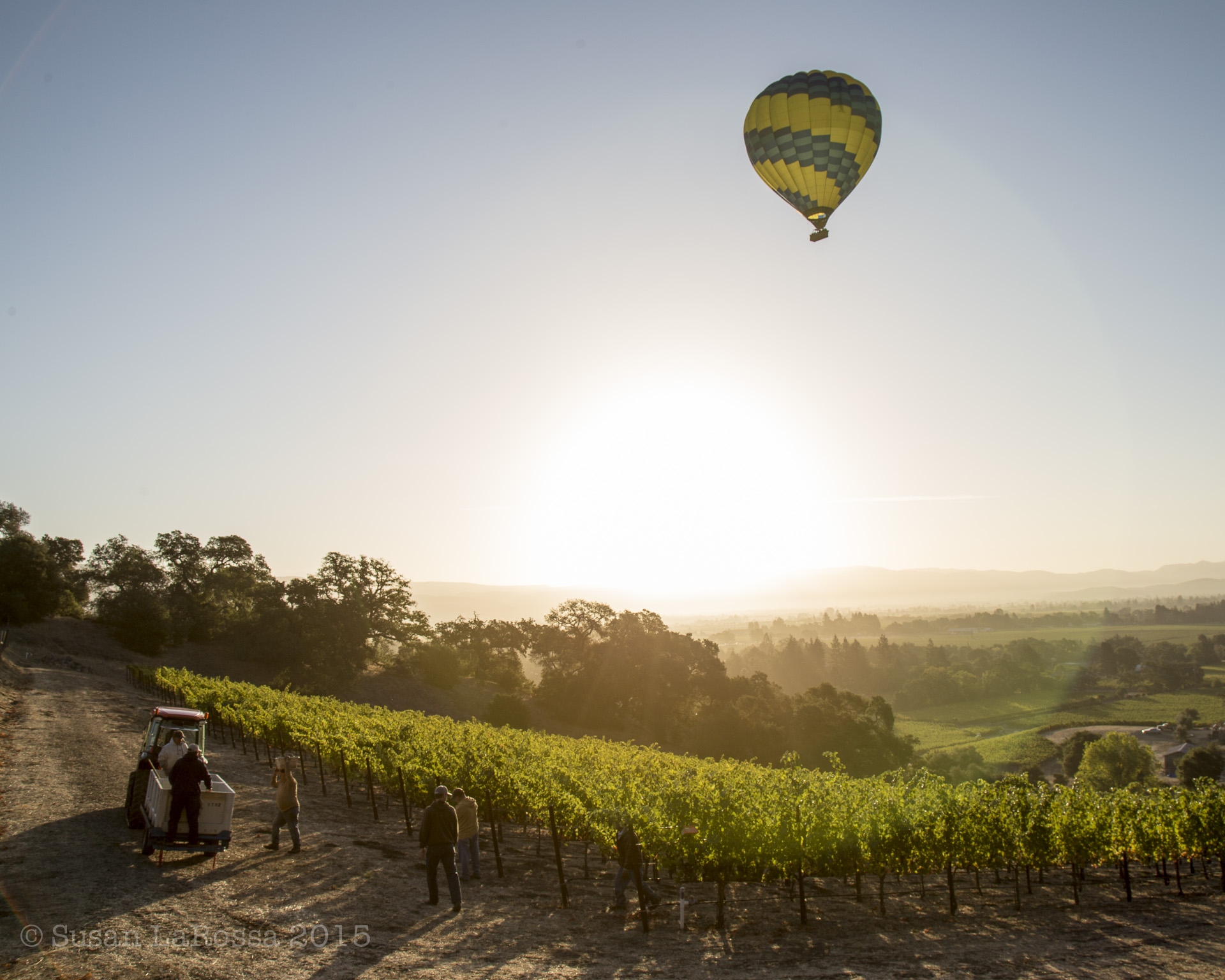 big balloon over Linda's Hillside