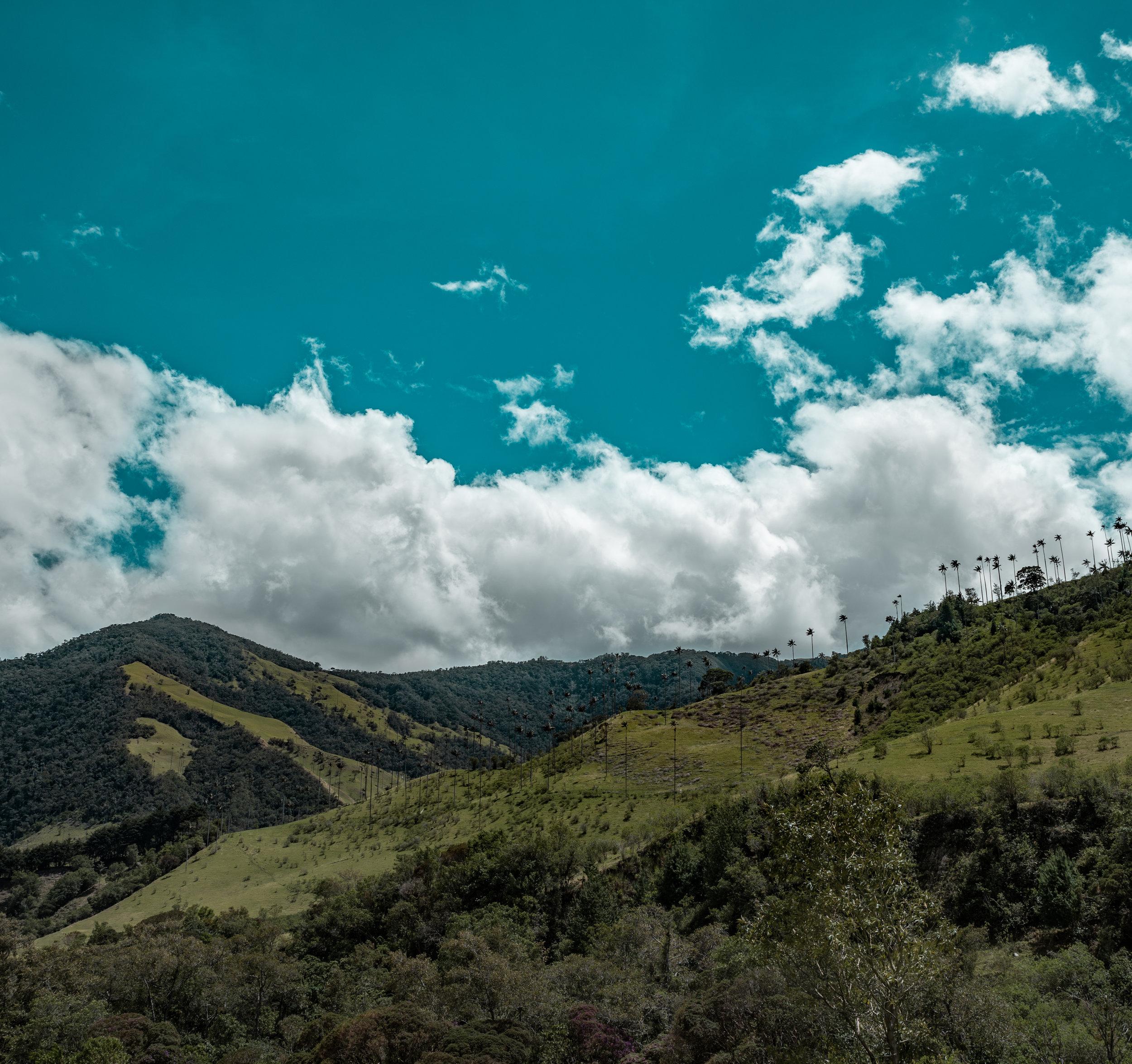 Cocora Valley 1.jpg