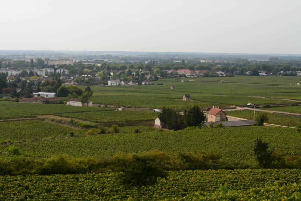views-over-beaune-burgundy.jpg