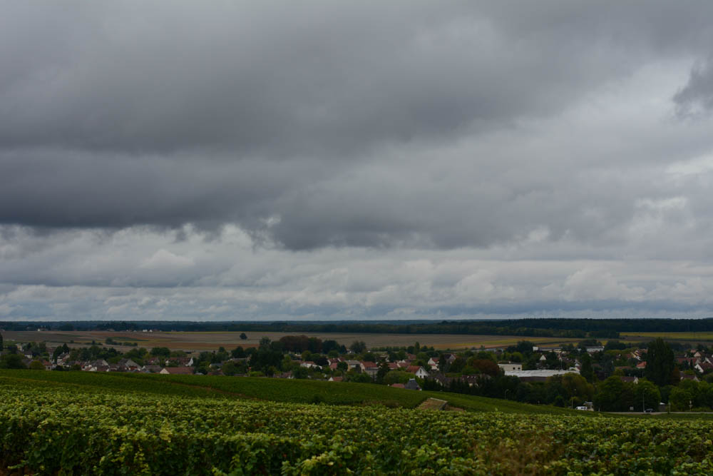 burgundy-france-1.jpg