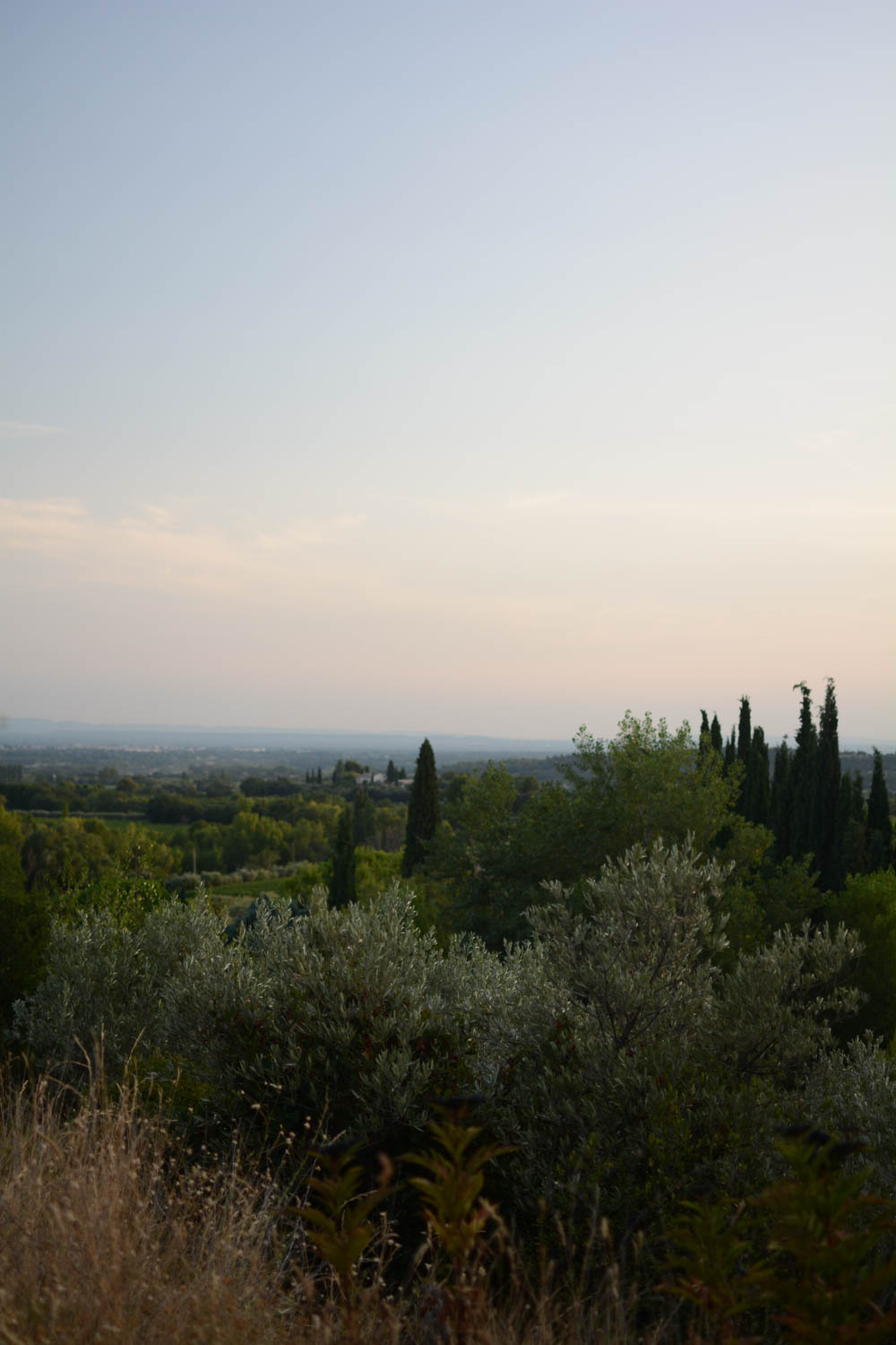 caromb-provence-twilight.jpg