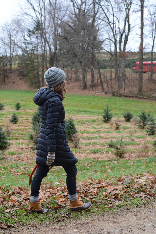 christmas-tree-farm-ohio-2.jpg