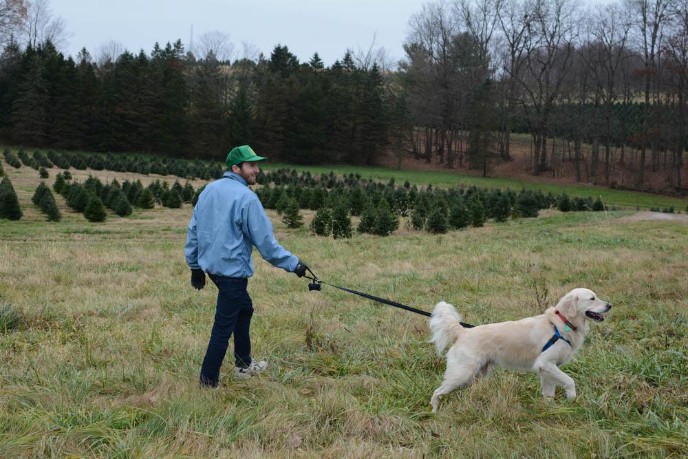 christmas-tree-farm-ohio-5.jpg