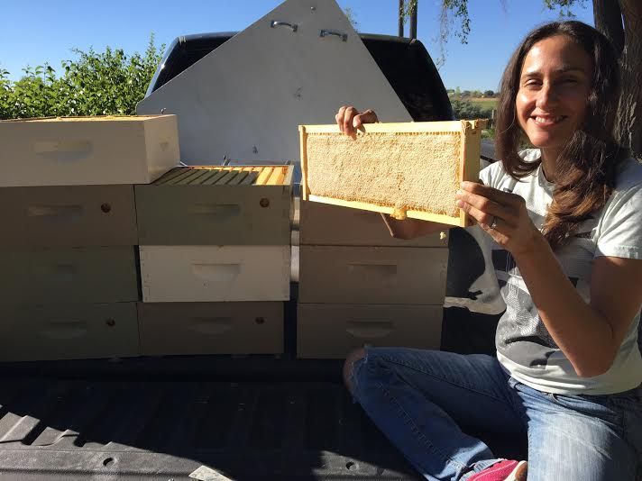 This is our truck full of medium boxes and a frame full of honey. This frame was loaded and weighed about 6 pounds!