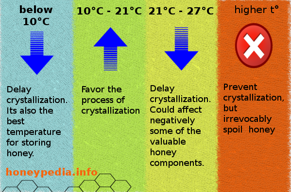 honey_crystallization_infographic.png