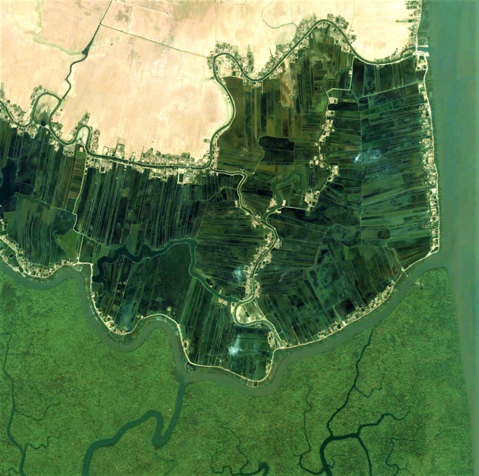 Shrimp farms and Sundarban's mangrove forest divided by protective river line. Image width: 5 kilometers